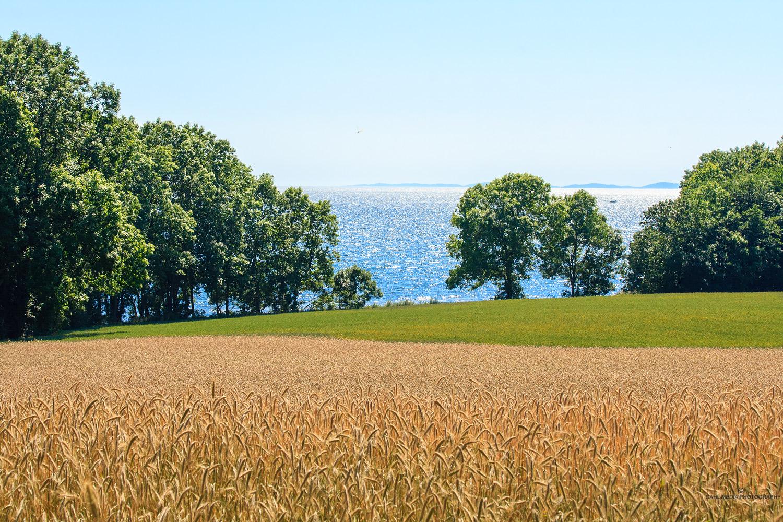 Oslofjorden © Copyrighted