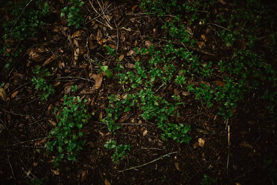 073-alaamarzouk-alaamarzoukphotography-mcallenweddingphotographer.jpg