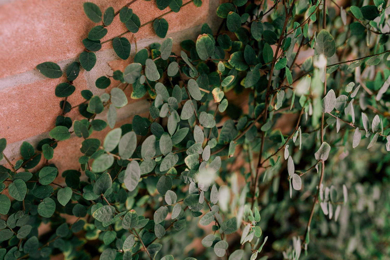 002-alaamarzouk-alaamarzoukphotography-mcallenweddingphotographer-boerneweddingphotographer.jpg