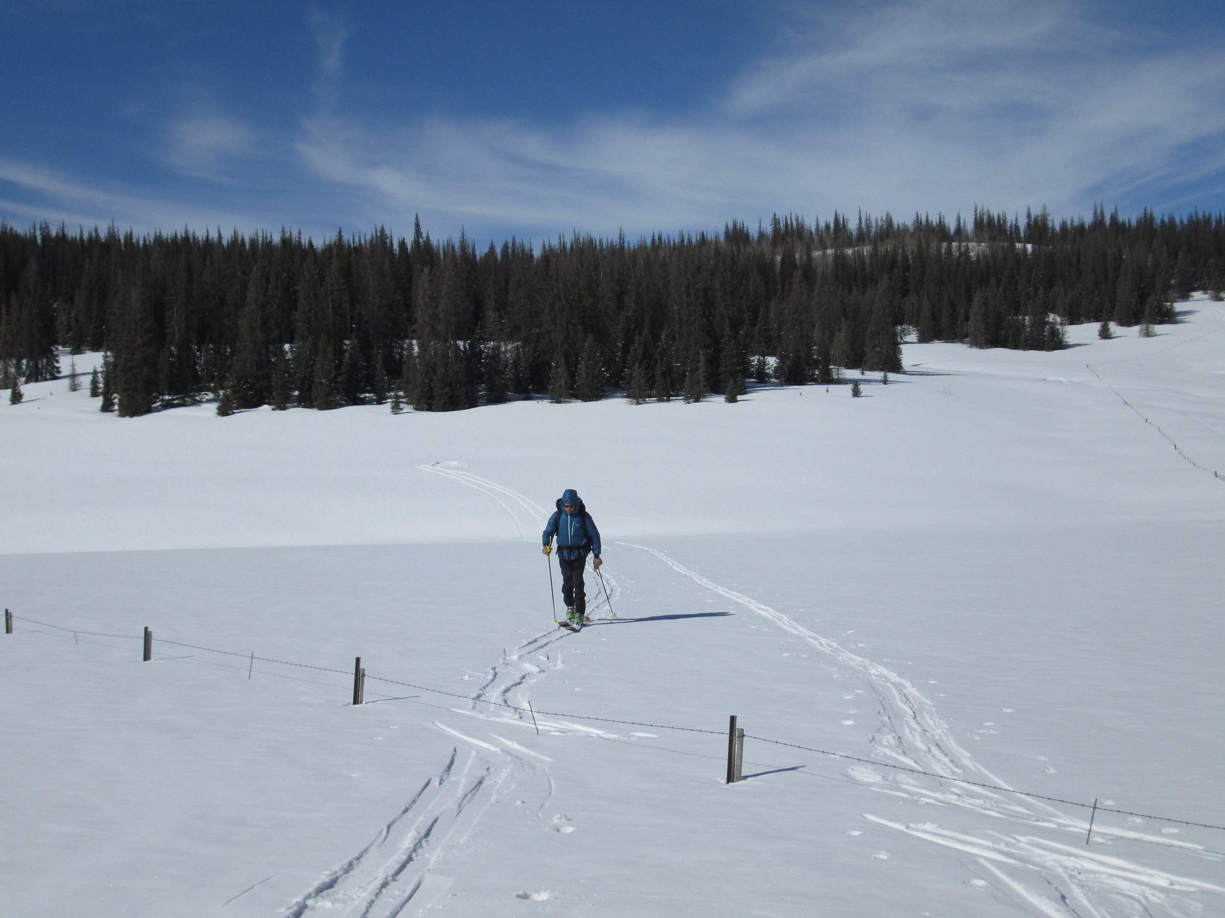 Heavy, clean snowcover blanketed the Spring Creek Pass locale on March 29, 2014 as dust layer D3-WY2014 lay just below the surface.  CSAS field assistant Andrew Temple is seen returning from the completed snow profile, at the site in the distance.