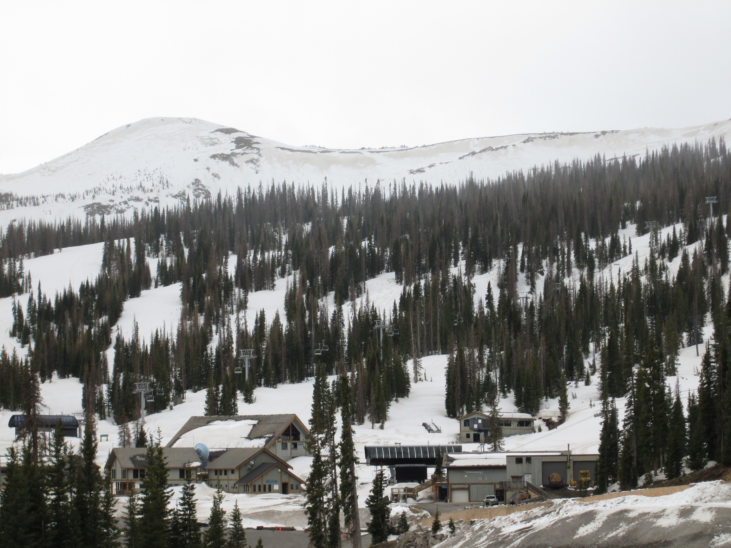Wind stripping had removed recent snow and exposed dust layer D8 below the ridgeline at Wolf Creek Ski Area