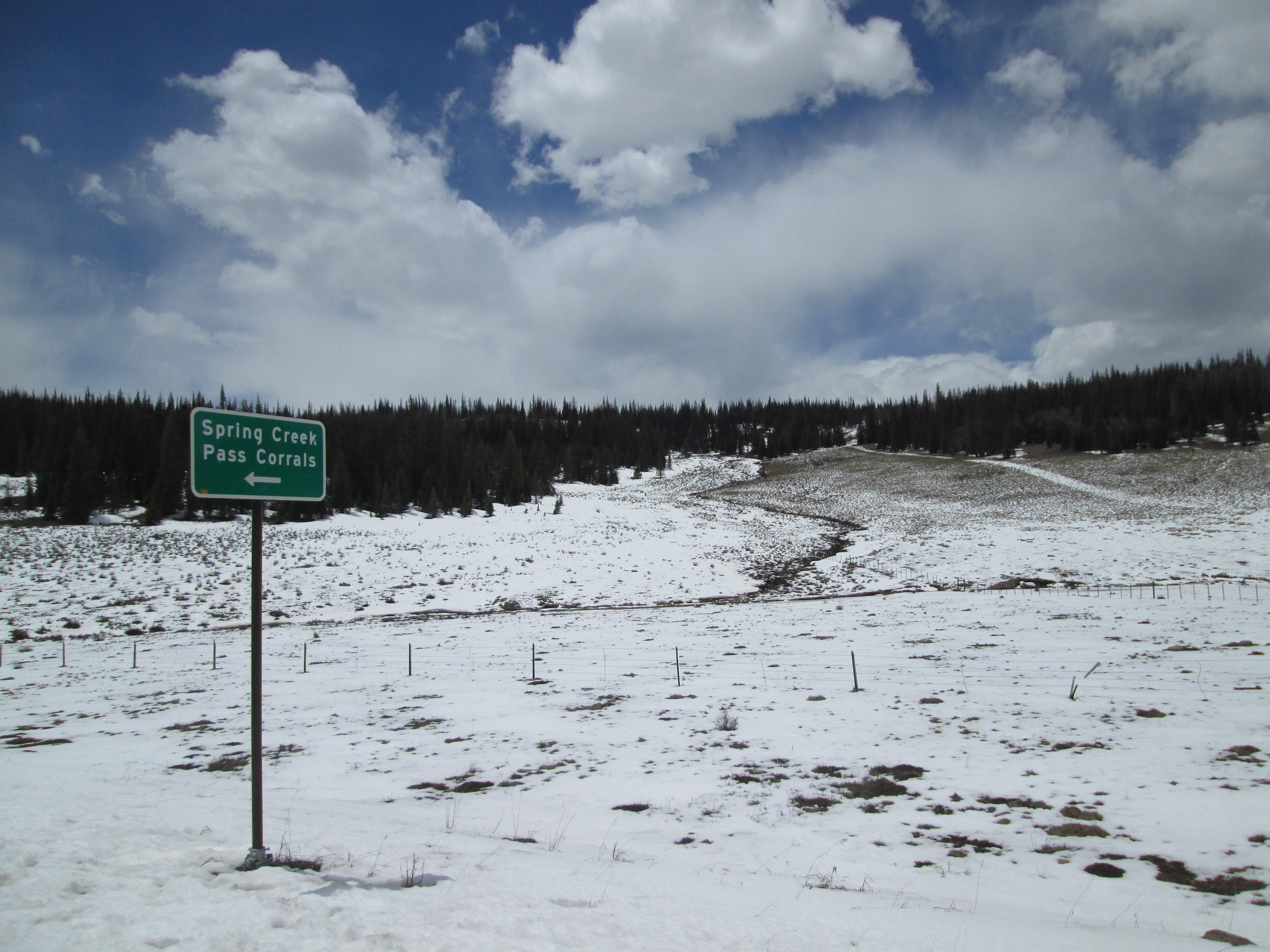 The northeast-facing, 10,800' Spring Creek Pass CODOS site, located in the sagebrush meadow seen behind the sign, in front of the trees.