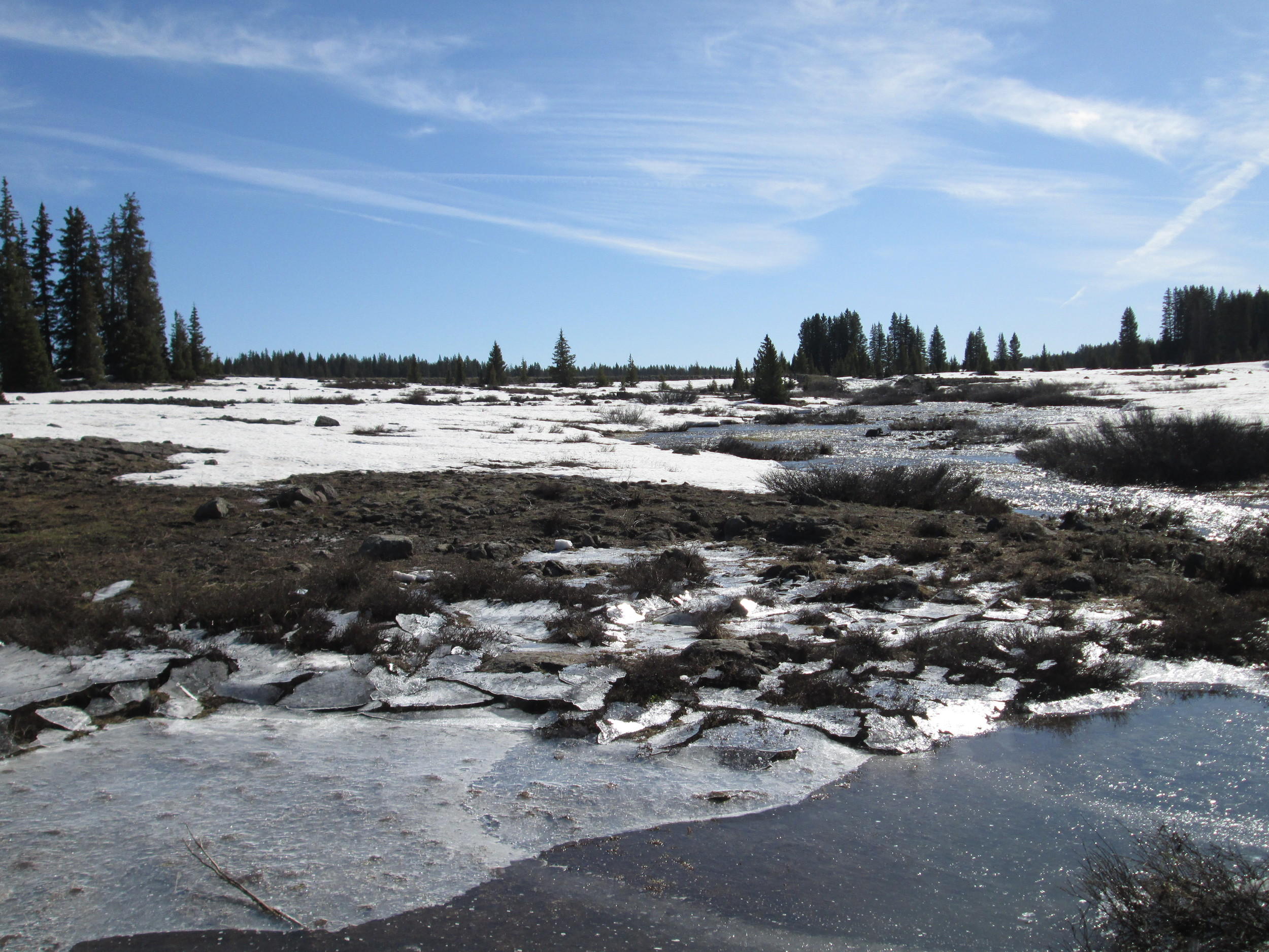 Open parks on the top of the Grand Mesa were rapidly losing snowcover and generating widespread sheet flow of snowmelt runoff.