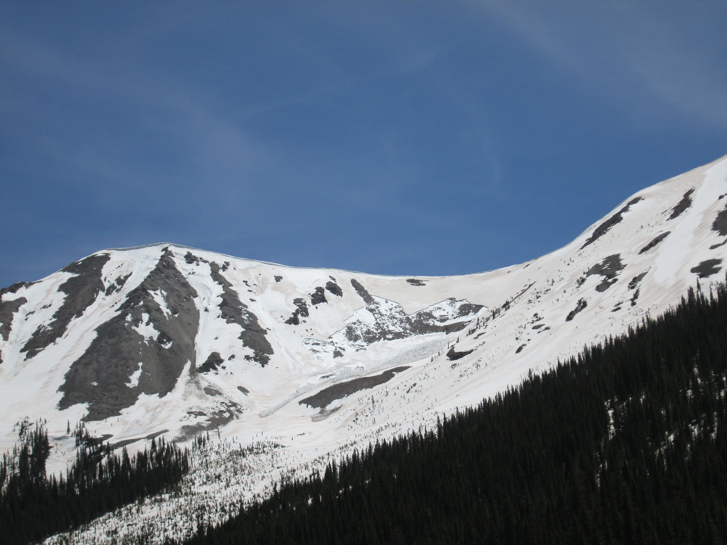 """A fresh """"wet slab"""" avalanche was observed on a north aspect just above the ghost town of Independence. High snowmelt rates produced by dust at the snowpack surface, and the resulting intense flux of free water into the snowpack structure, can contribute to this type of very dangerous spring avalanche activity."""