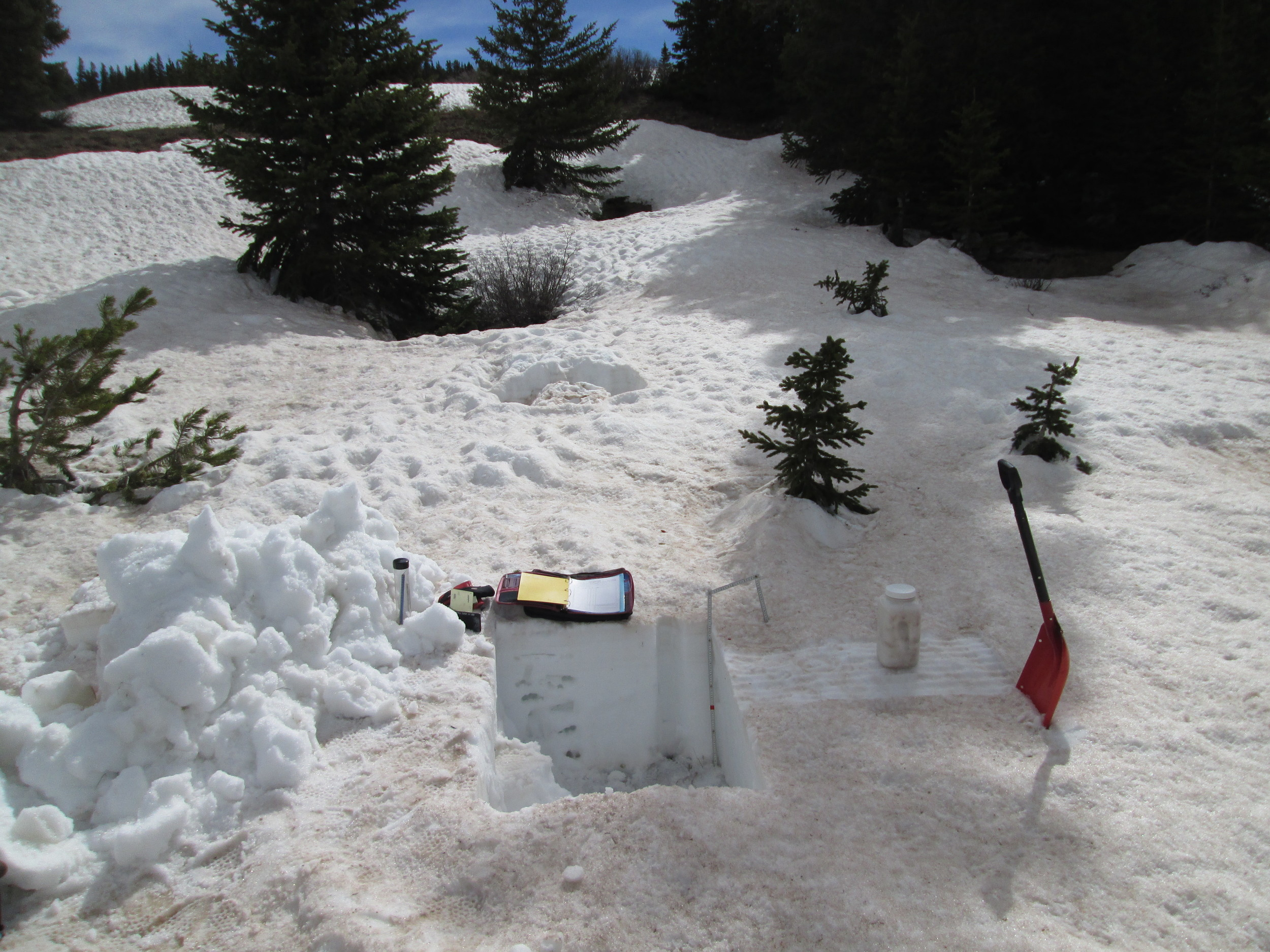"""Some 27"""" of snowpack remained at the CODOS Hoosier Pass snow profile site; the re-filled hole from our previous, April 24 snow pit is seen just a few yards to the east. An 'all layers merged' dust sample was collected by scraping the surface. As was typical at all sites, dirty melt water infiltrating from the surface had stained snow underneath the sampled snow, and most of the winter's wind-blown vegetation debris had also accumulated at the snow surface. Still, the vast majority of dust material was captured and will enable analysis of the merged dust properties."""