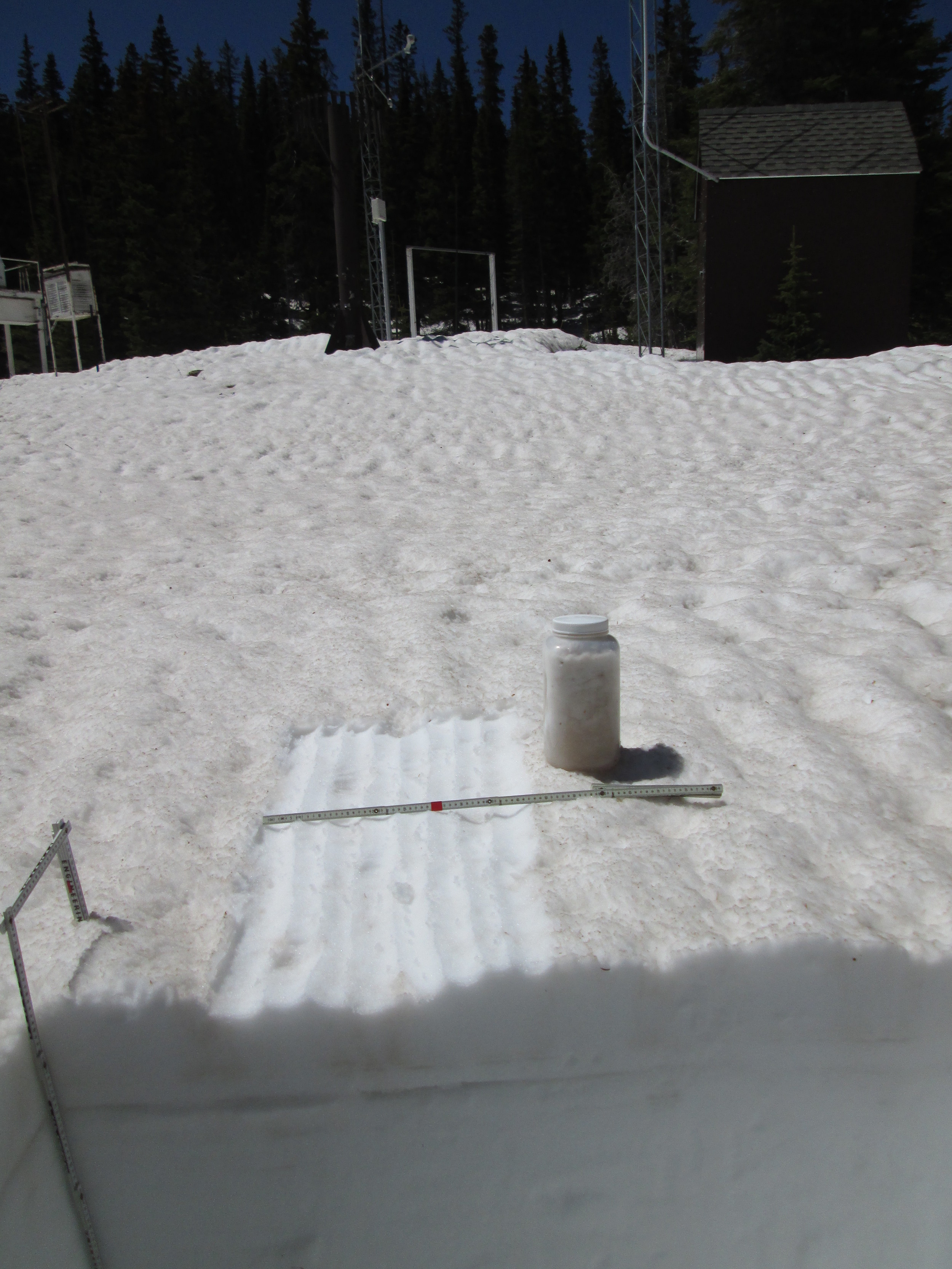 """The 35"""" deep snow pit at Berthoud Summit on June 3 contained 15.5"""" of SWE, almost exactly matching the SWE being reported at the time by the Snotel just a few yards away. Merged dust containing at least events D3, D4, and D8 was exposed at the surface and an 'all layers merged' (ALM) sample was collected from an area measuring 1.00 m x 0.48 m, or 0.48 m2. Dirty melt water from the snow surface had percolated downward in """"preferred flow channels"""" into the underlying clean snowcover before spreading laterally at a layer boundary within the snowpack and creating a layer of dust-stained slush, as seen here a few inches below the surface in the snow pit face. Nonetheless, the ALM sample did capture the vast majority of the merged dust material, for analysis of its chemical and other properties."""