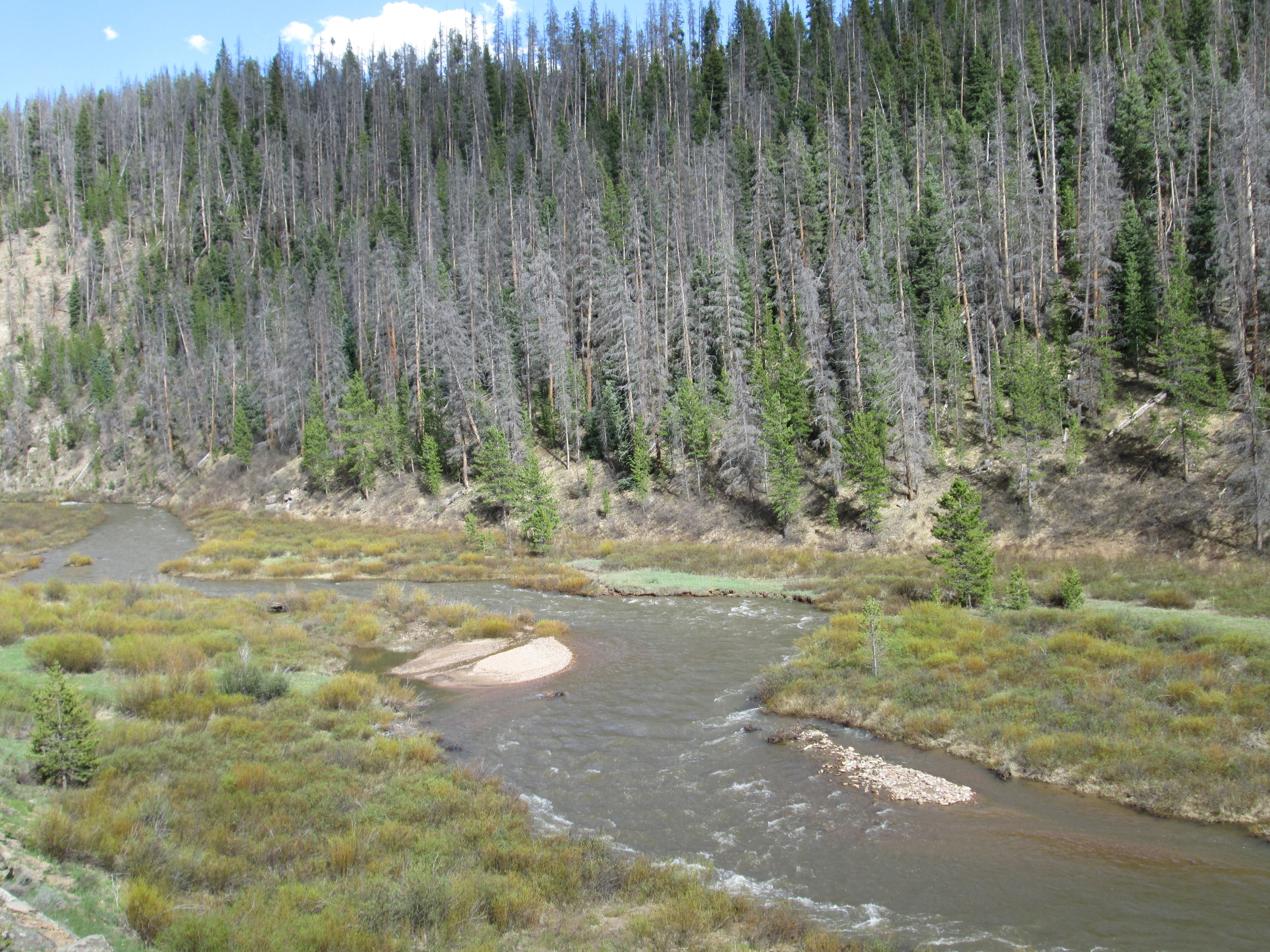 Willow Creek just a few miles south of Willow Creek Pass.