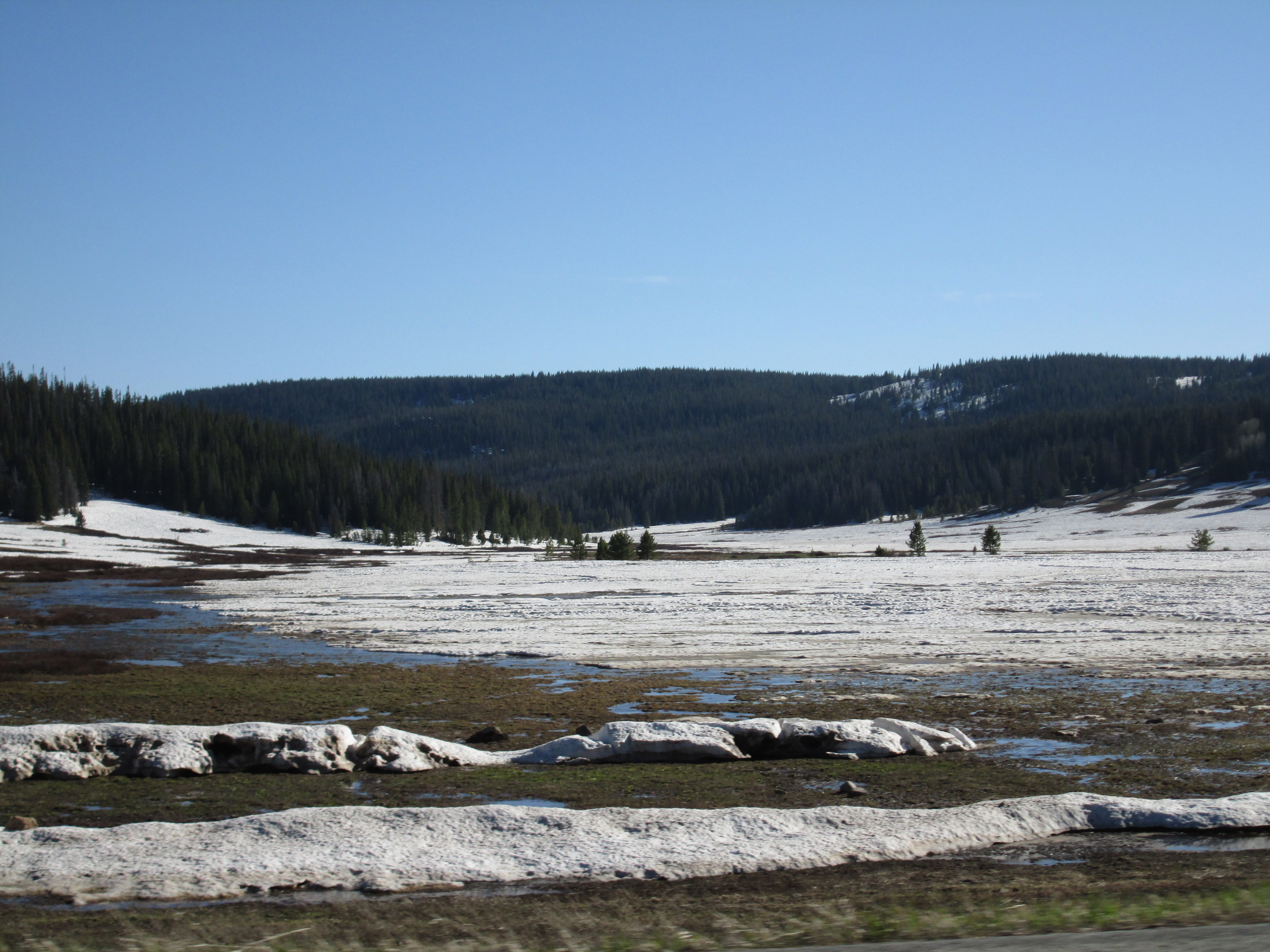 Open parks on the Rabbit Ears Pass plateau were exhibiting very rapid snowmelt in very dirty snow, generating extensive sheet flow, standing water, and 'lakes' of slushy snow, as seen on the late afternoon of June 3.