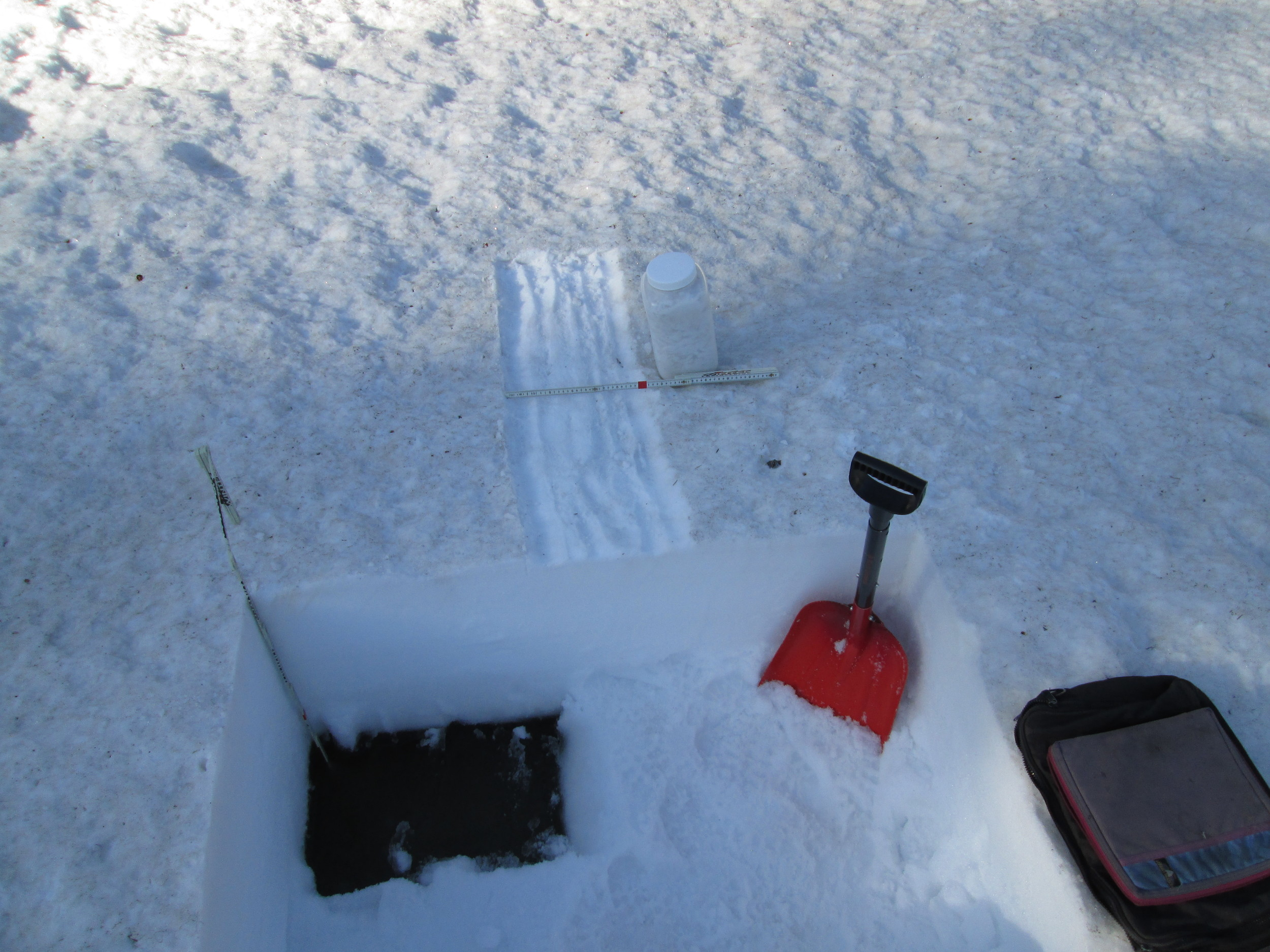 """Considerable snowmelt had occurred at the CODOS site since our prior April 25 visit, reducing snowpack depth from 91"""" (231 cm) to just 28"""" (70 cm), 4"""" of which was 'liquid snow' (the dark, standing water at the base of the snowpack, as seen in the pit corner). Snowmelt at the nearby Rabbit Ears Snotel had frequently exceeded 2"""" of SWE loss per day in the preceding weeks. All dust layers had merged at the snowpack surface and an 'all layers merged' sample was collected. Dust layer D8 was present but less dominant at Rabbit Ears Pass than at CODOS sites farther south, somewhat masked by considerable amounts of darker tree debris, accumulated from most of the winter."""