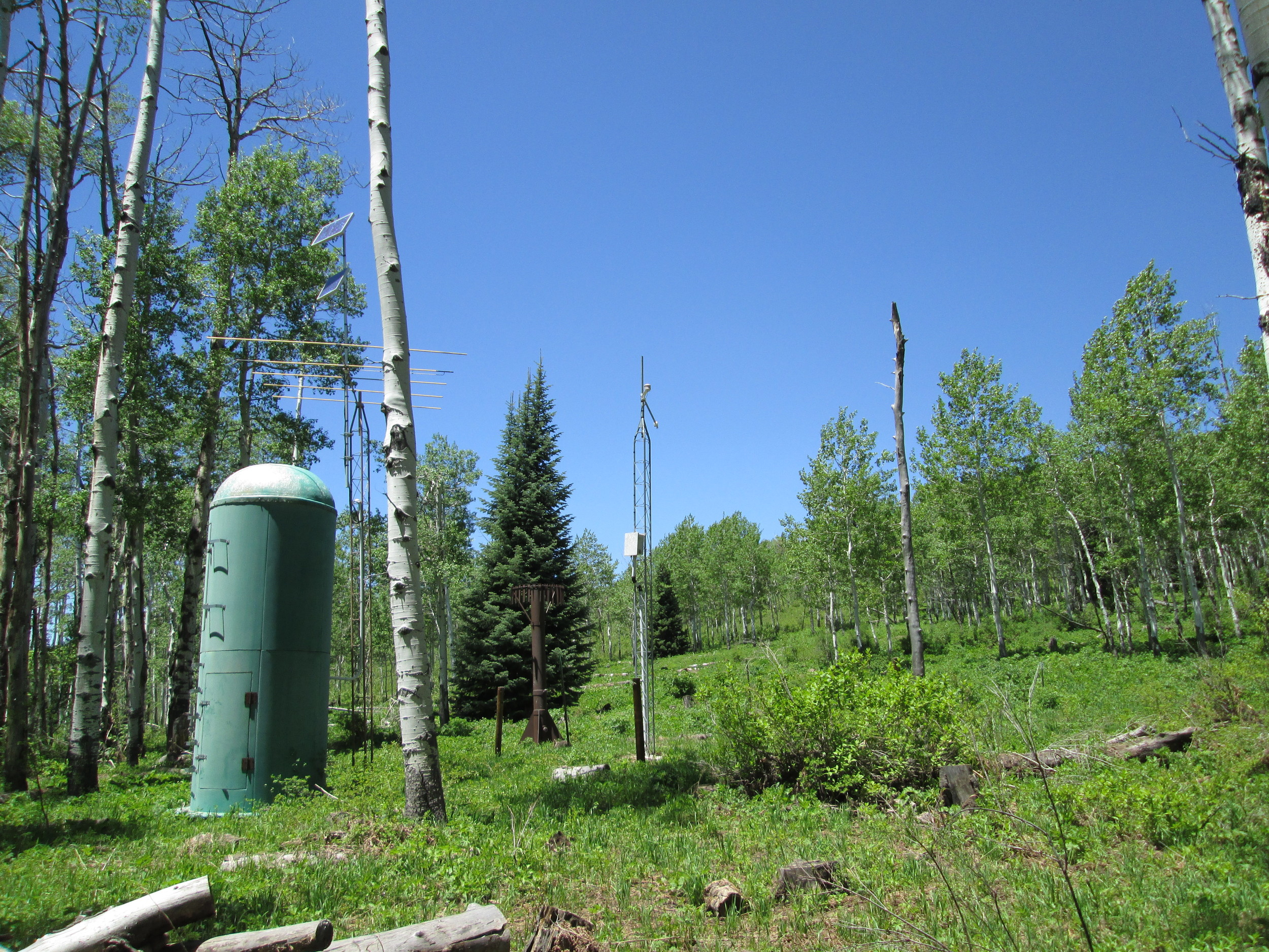 As of the June 4 visit the McClure Pass Snotel and adjacent CODOS snow pit site had long since lost all snowcover.
