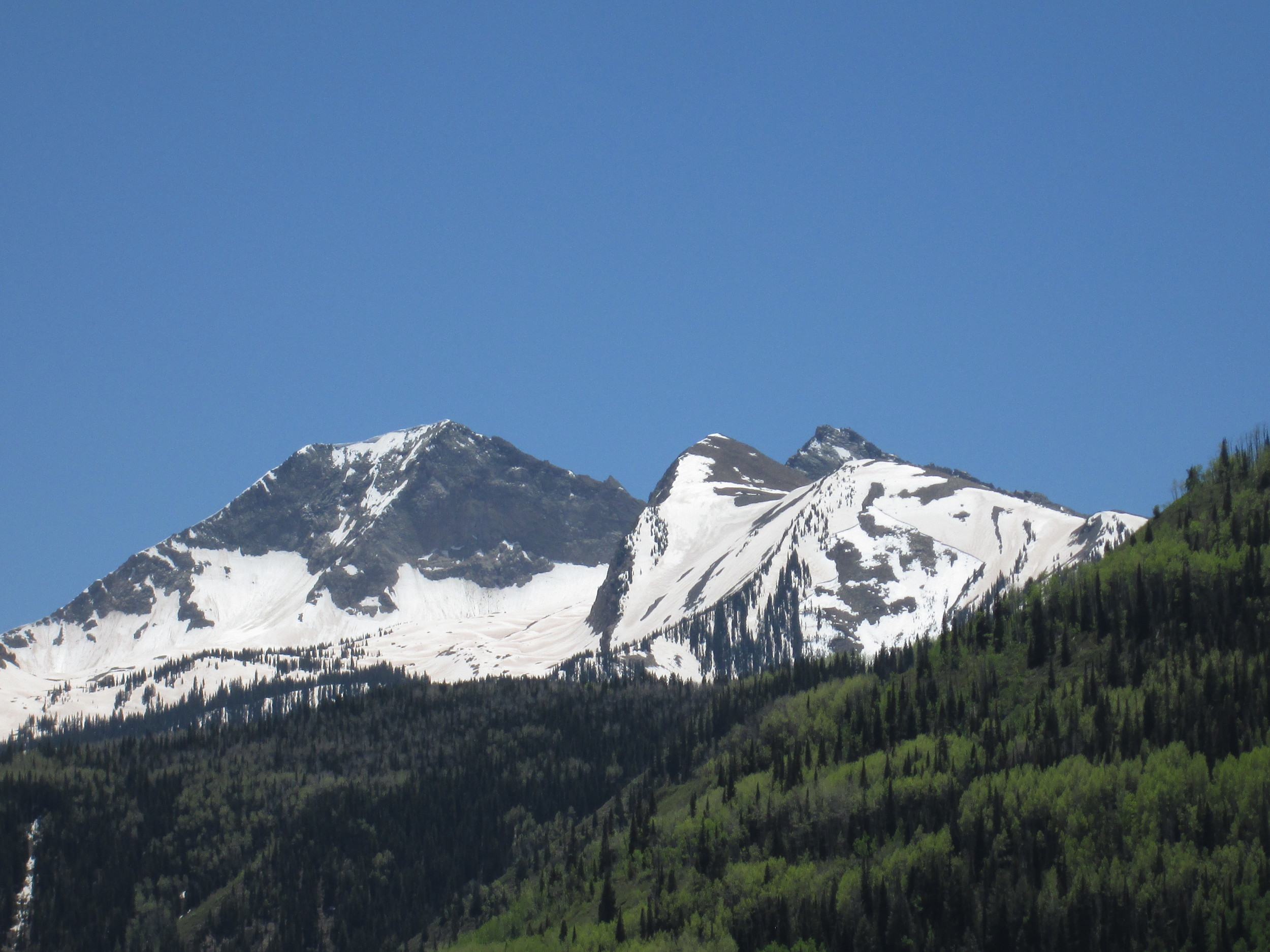A recent wet slab avalanche on a flank of the north face of Chair Mountain, just south of McClure Pass. Dust layer D8 and other merged dust layers were rapidly re-emerging and may have contributed to this avalanche.
