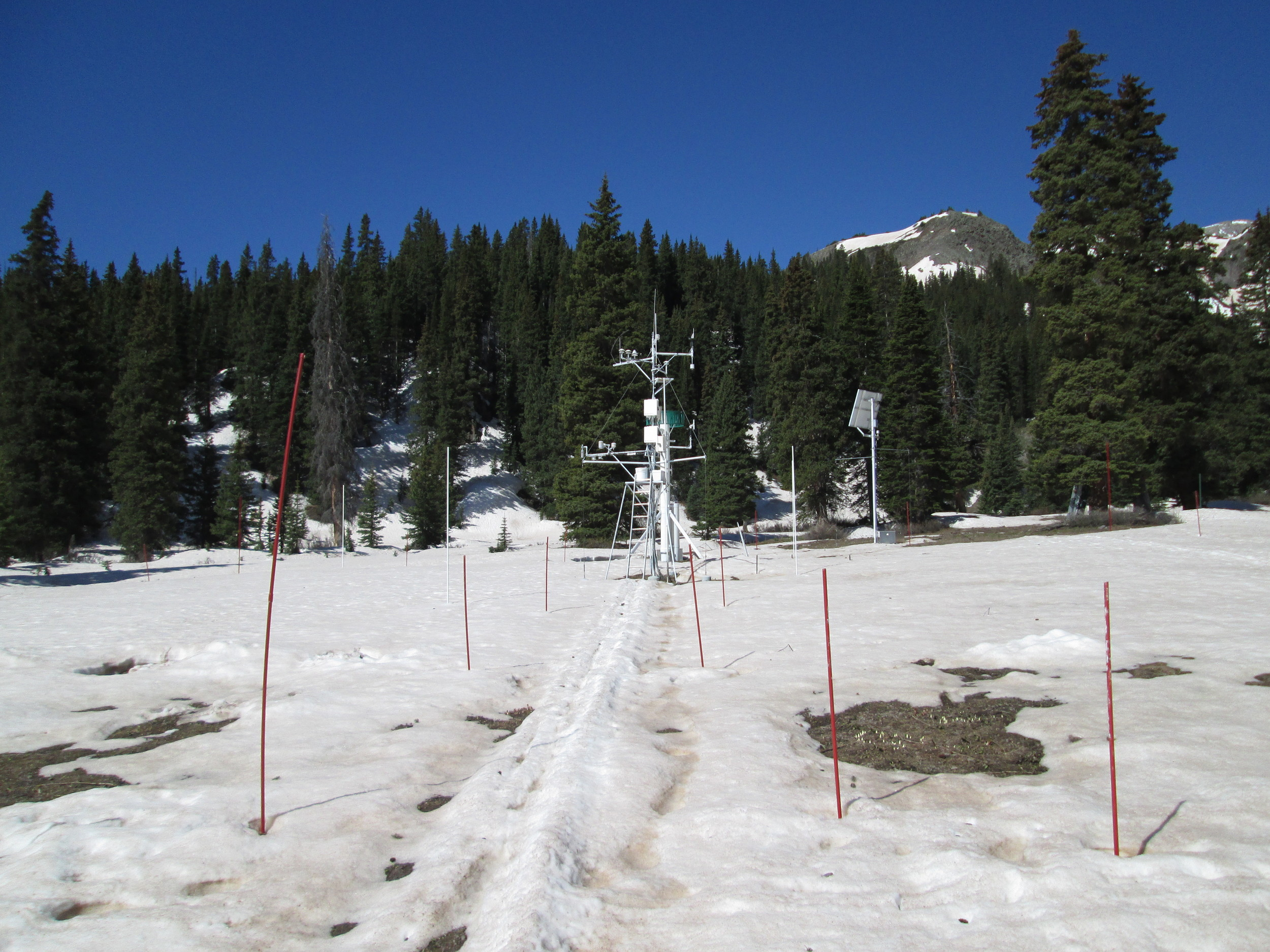 """Upon return from the CODOS circuit, the Swamp Angel Study Plot (SASP, at 11,060') at Senator Beck Basin was on the cusp of """"snow all gone"""" (SAG), with all dust layers D2-D8 merged at the snowpack surface. Dust conditions, dust color, and reductions in snow albedo here were very similar to those observed at Grand Mesa, Independence Pass, and our Front Range CODOS sites. (The snow surface at our Rabbit Ears Pass CODOS site was, if anything, generally darker than this due to accumulated vegetation debris)."""