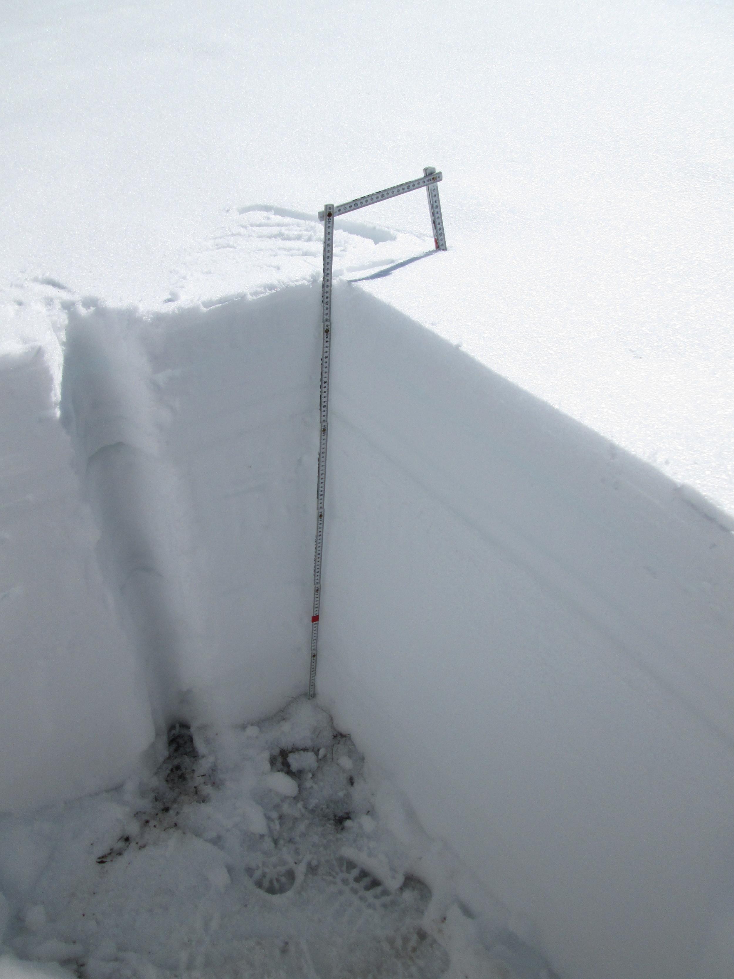 Grand Mesa Snow Profile