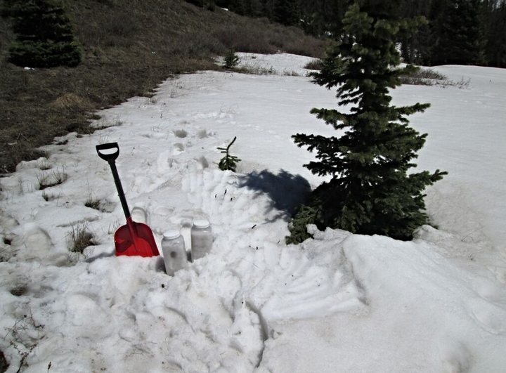 """An """"ALM"""" sample of merged D3/D2 and possibly D1 dust was collected in exposed patches on the fringe of snowcover at the Wolf Creek Pass CODOS site."""