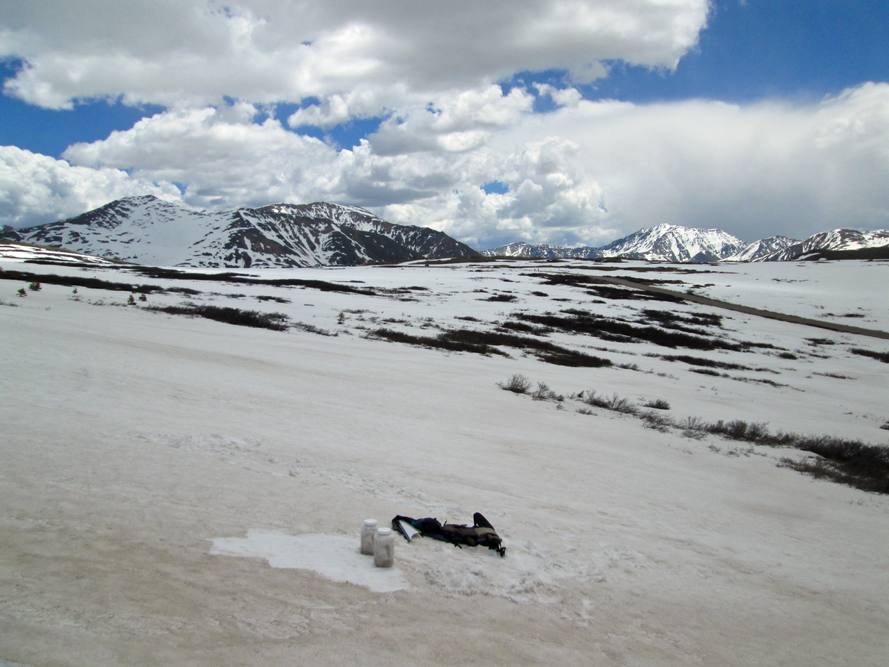Shallow snowcover on Independence Pass, on June 15, 2015 was rapidly melting and exposing willows and bare ground.  Solar radiation absorbed by these 'dark elements' and then re-emitted as thermal (longwave) energy rapidly accelerate snowmelt around their perimeters.  The summit of the Pass is seen in the middle distance, with sunlit La Plata Peak (14,361') in the far distance, on the right.