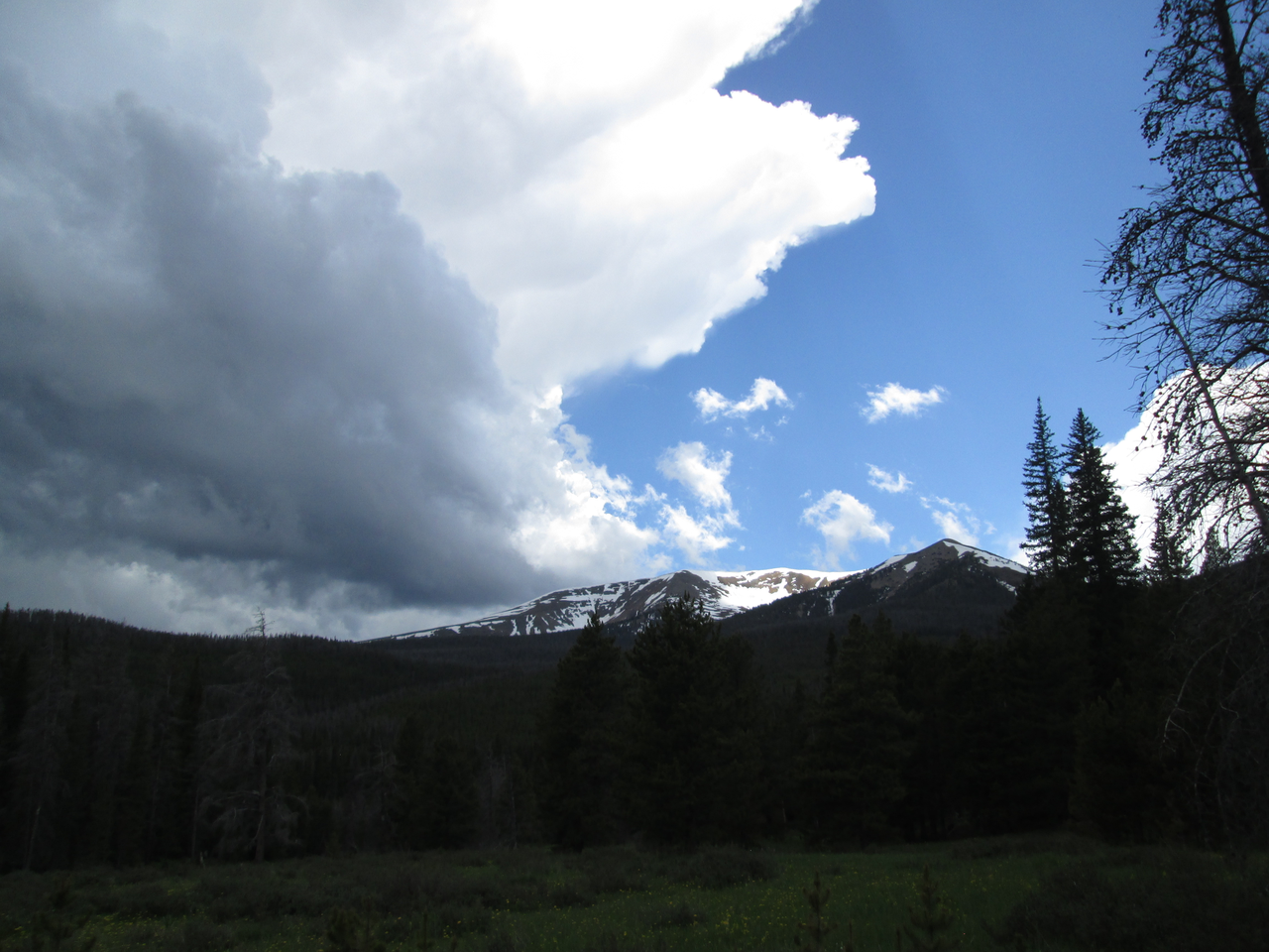 Snowcover in the upper Willow Creek drainage was rapidly melting on Parkview Mountain, seen on June 16, 2015 from the Willow Creek Pass CODOS site.