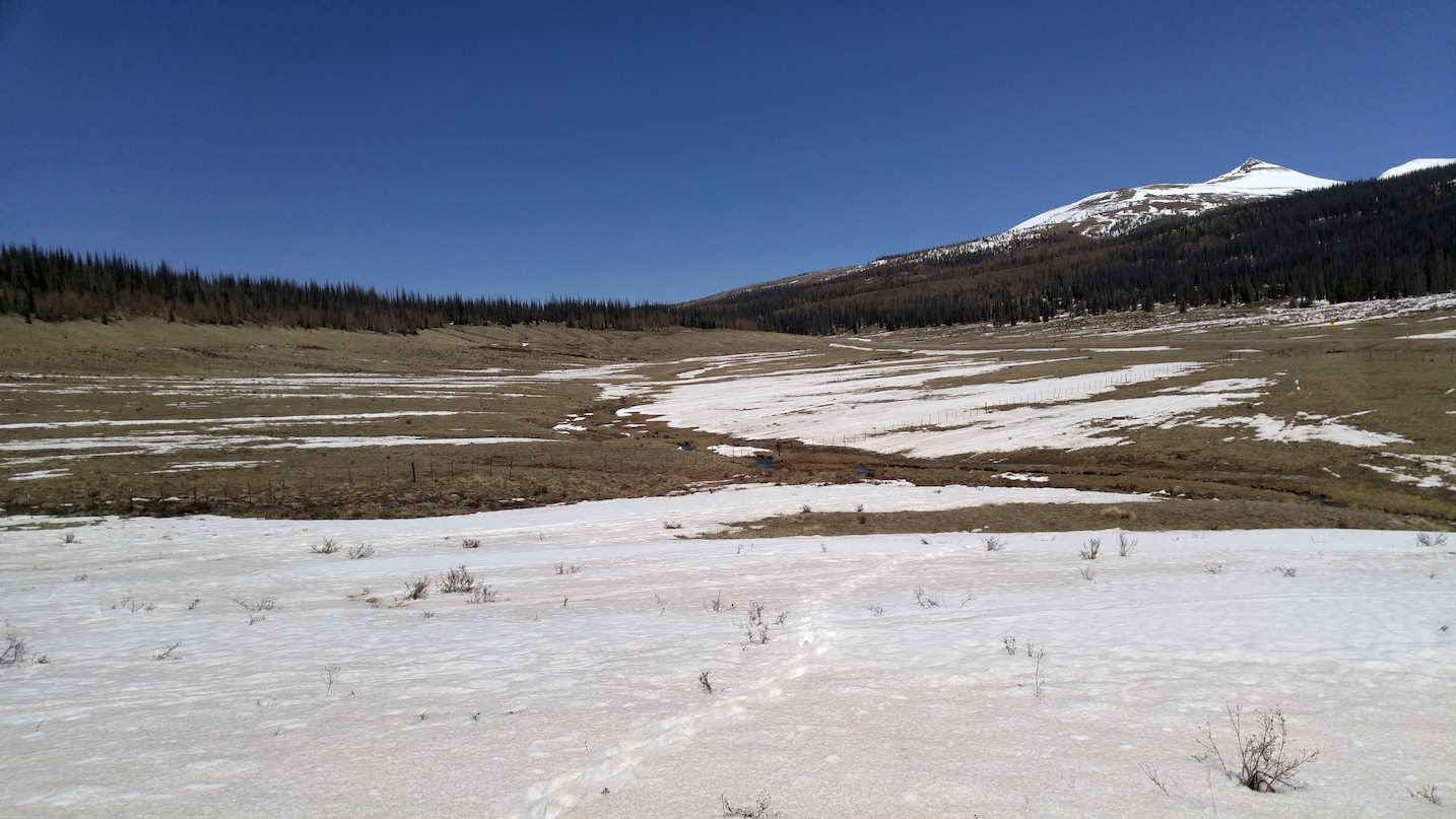 Spring Creek Pass on May 12, 2016. Surrounding landscape at Spring Creek Pass CODOS sample site.