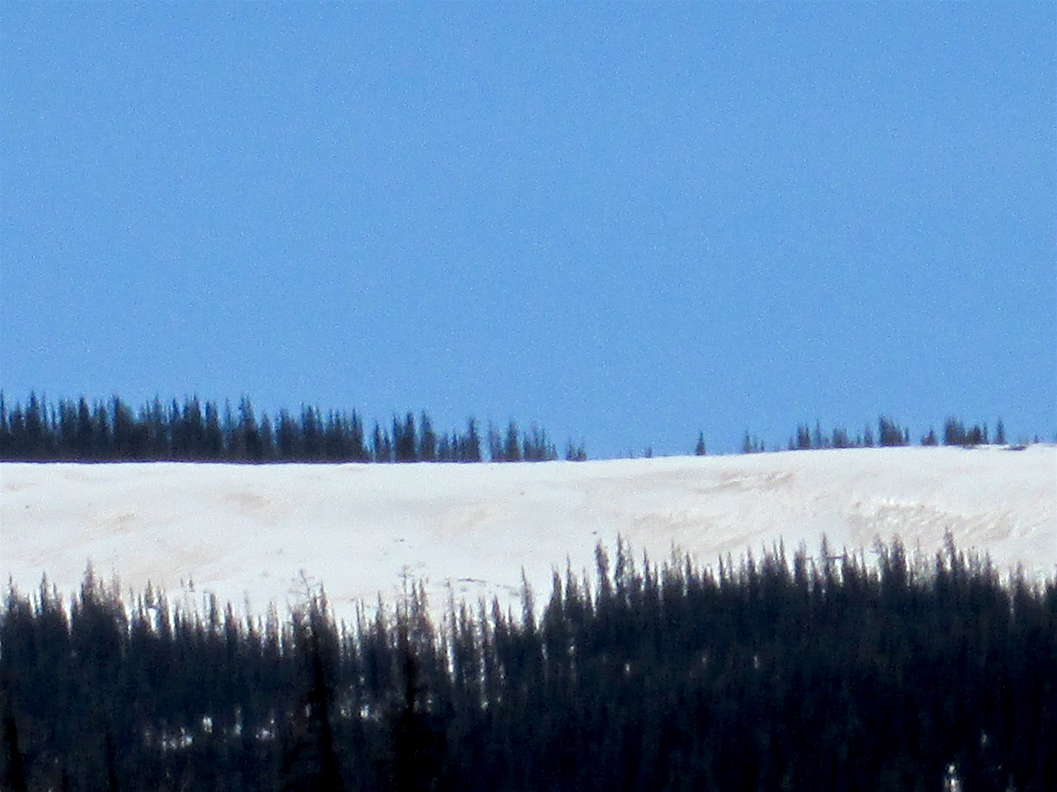 Near Spring Creek Pass on May 12, 2016. Photo taken of exposed dust on mountain face above sample site. Higher elevations may see a longer period before full dust emergence as field reports have noted snow accumulation of upwards to 2' at high elevations near Redcloud Peak.