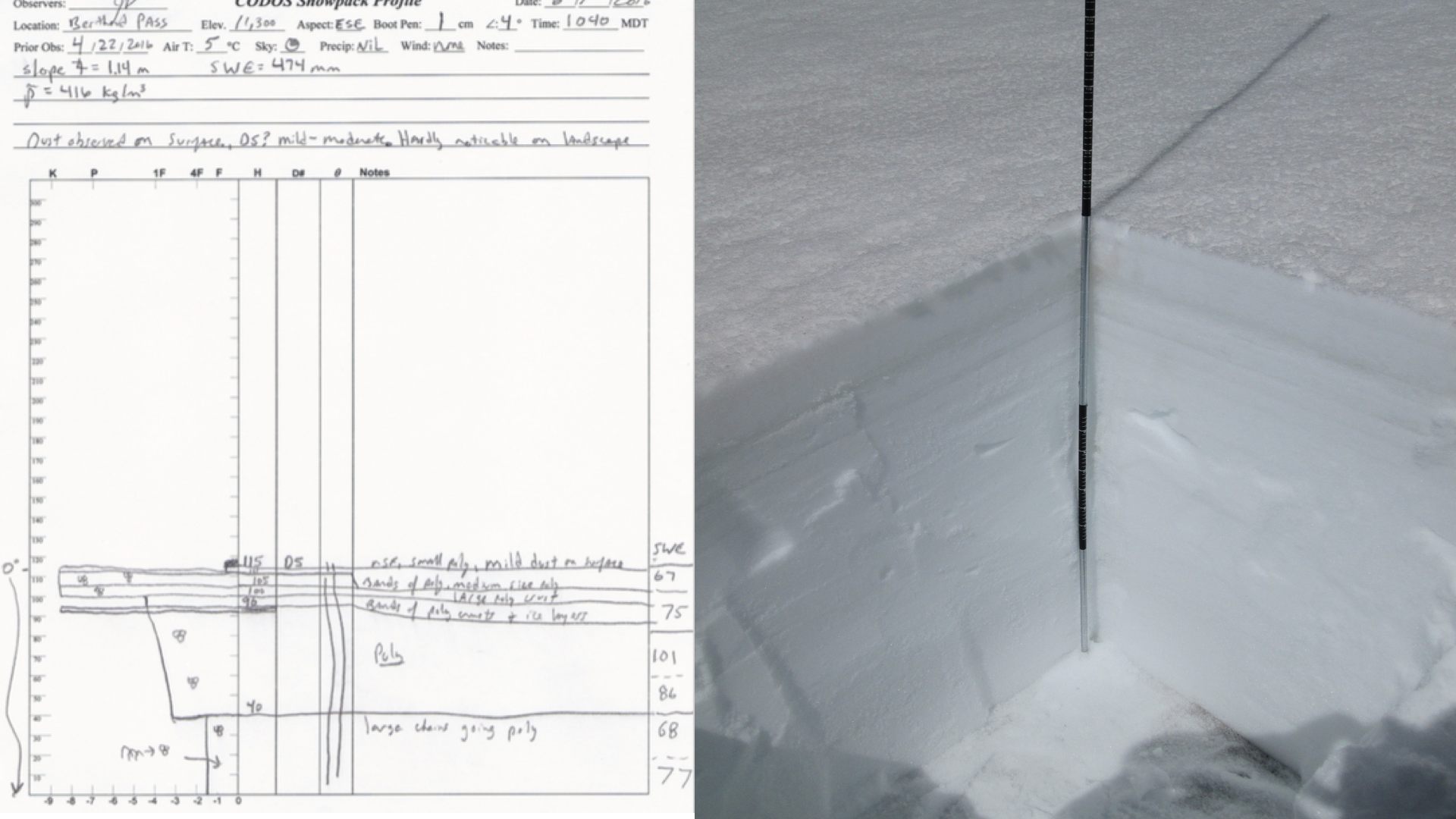 snow profiles.001.png