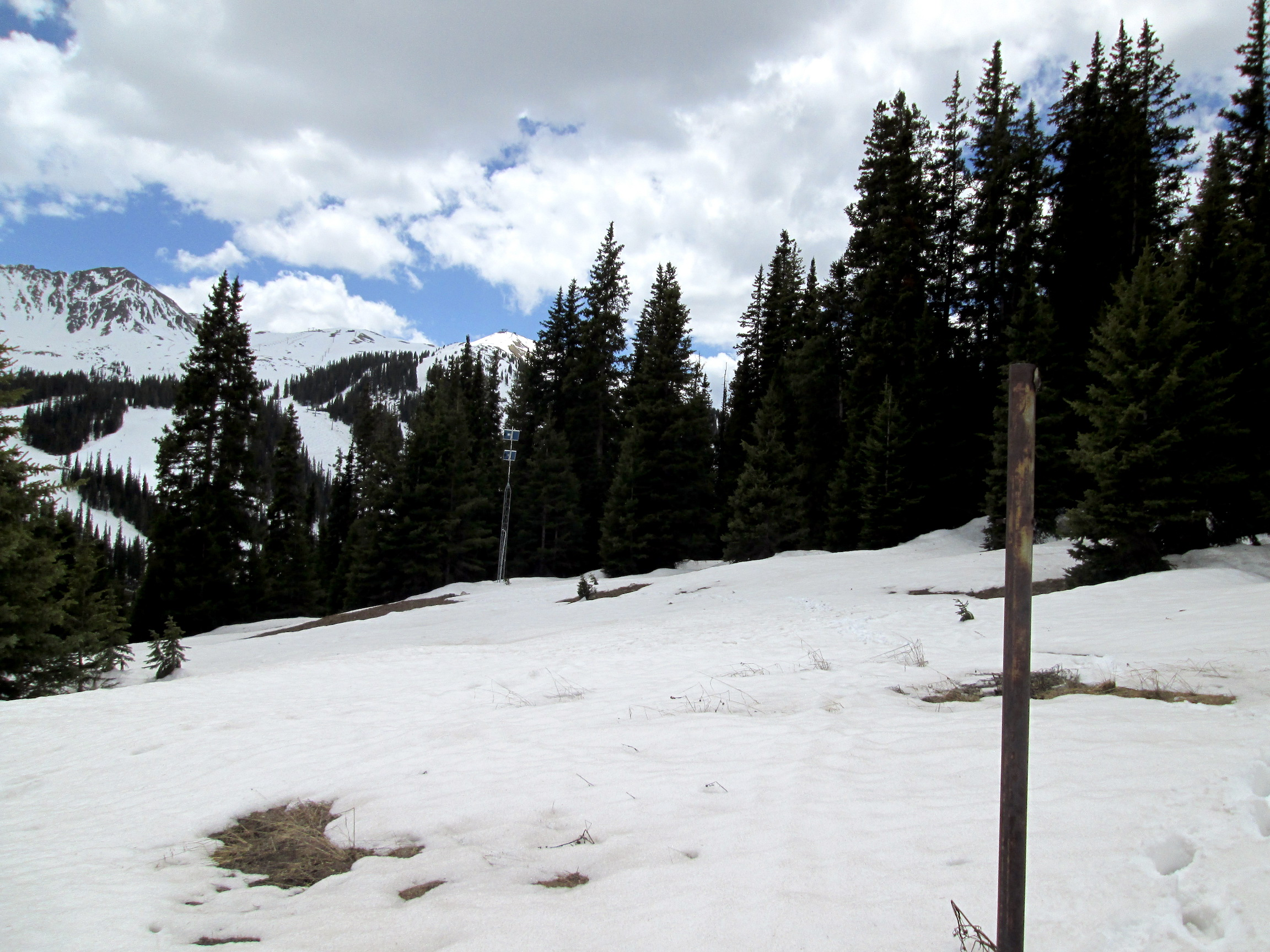 """Picture taken from Grizzly Peak sample site on June 1. About 1.5' of snow depth (6.6"""" of SWE) remains at the CODOS site, located in a clearing a few hundred feet from Grizzly SNOTEL, next to the tower visible in the background. Grizzly SNOTEL reported 5.4"""" of SWE on June 1. Over the past 8 days since May 26, SWE has decreased a total of 5""""."""