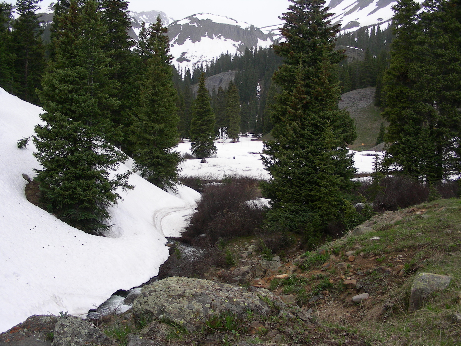 """Picture taken near Senator Beck stream gauge. Looking towards SASP, south facing slopes are snow free. Higher up the Study Basin at Senator Beck Study Plot there remains ~17"""" of SWE. June 6 was mostly rainy and cooler in the SBB area, a nice change of pace."""
