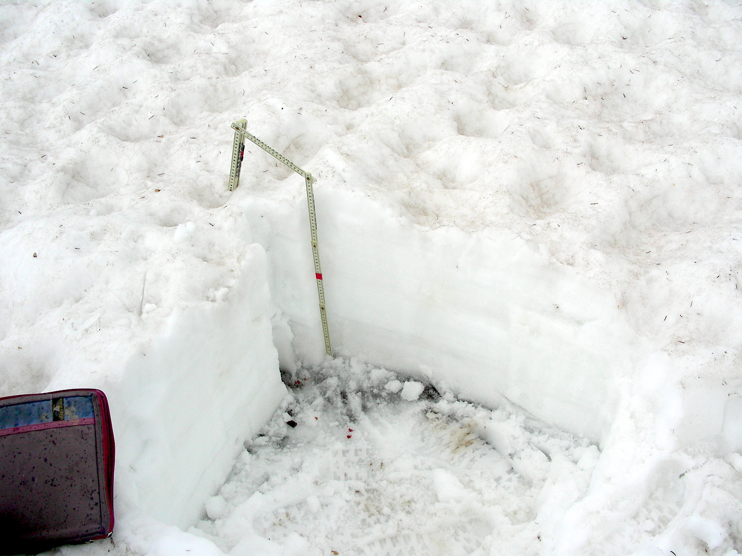 """Snow Profile at SASP on afternoon of June 6. 22"""" of snow depth, and 11.5"""" of SWE remains at the study plot."""