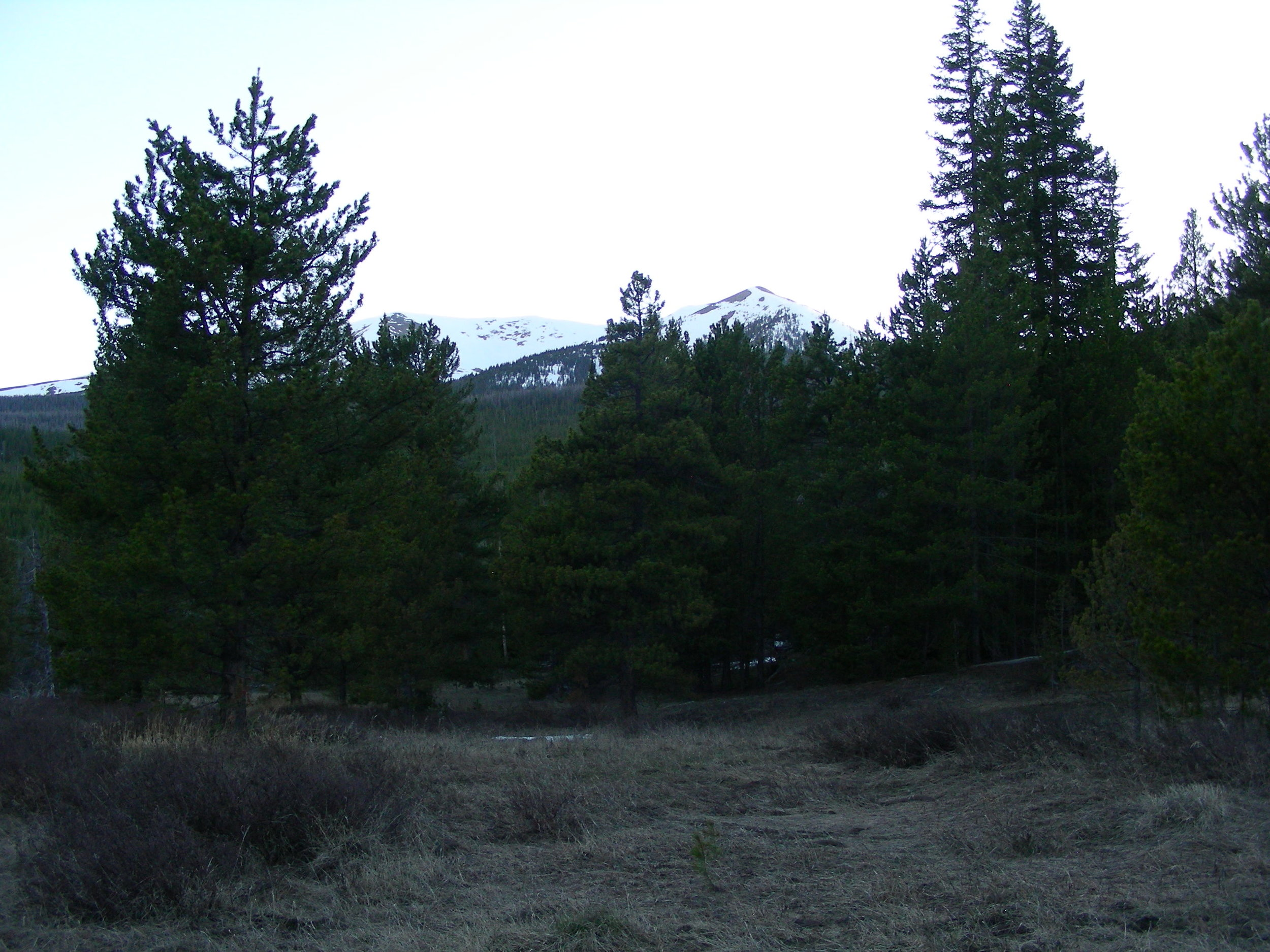 Picture of high country from Willow Creek Pass sample area.