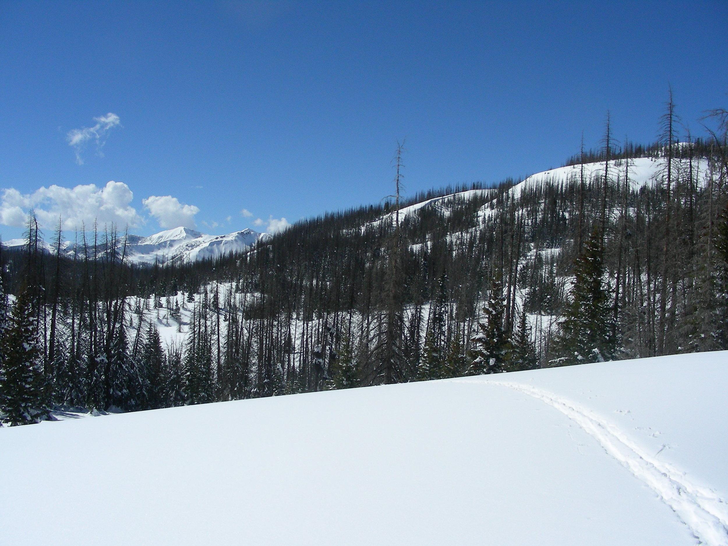 Wolfe Creek Pass