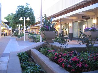 Image of Stanford Mall Garden