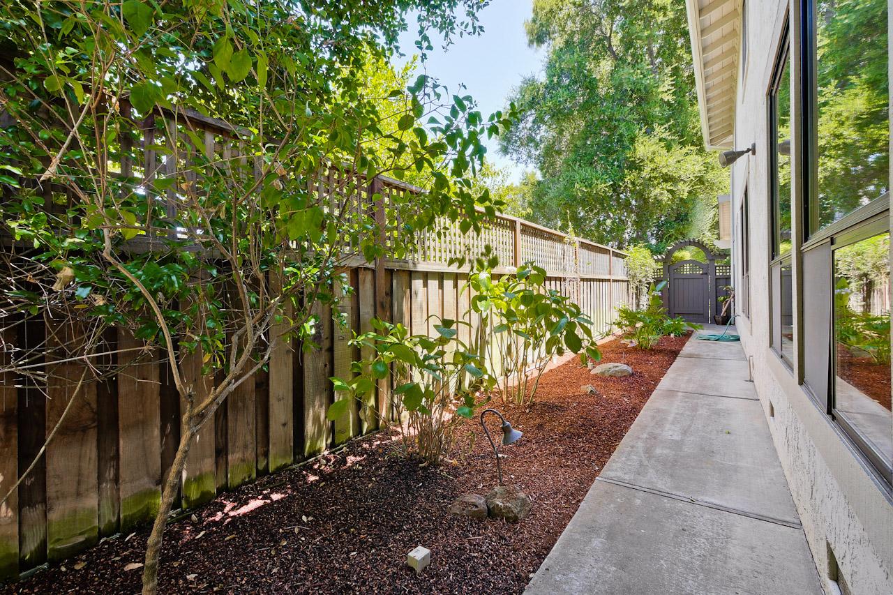Backyard      2_mls.jpg