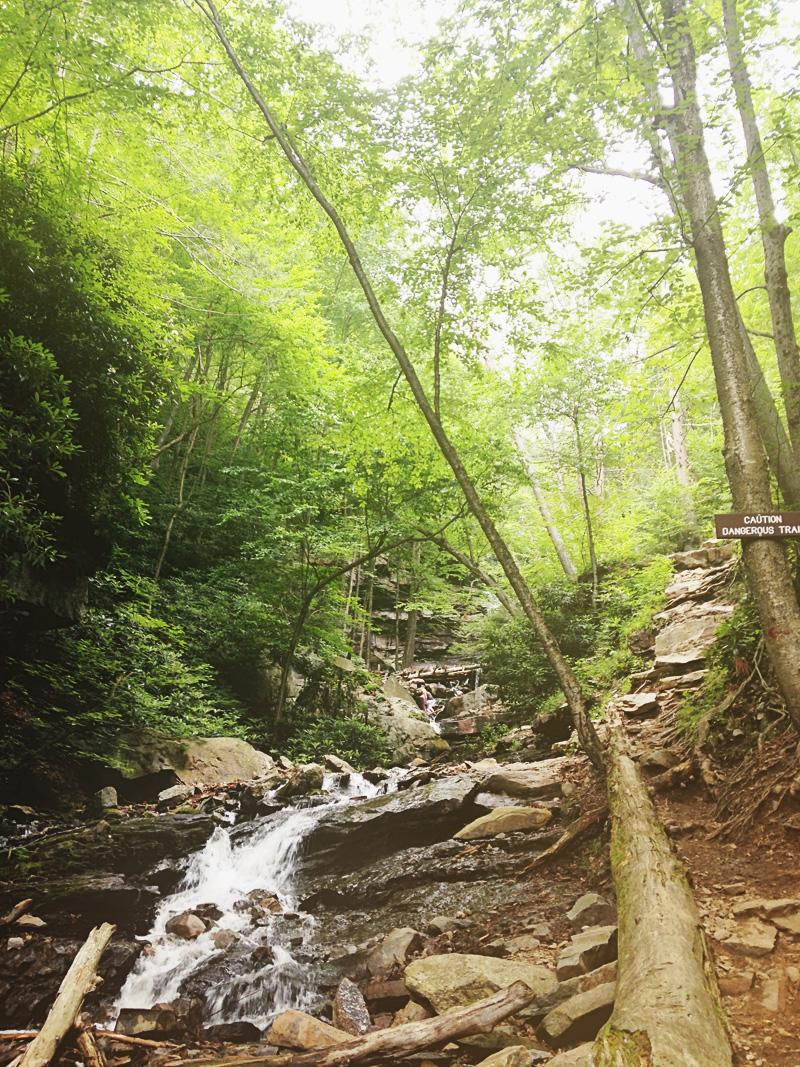 glen onoco falls trail signs | via: bekuh b.