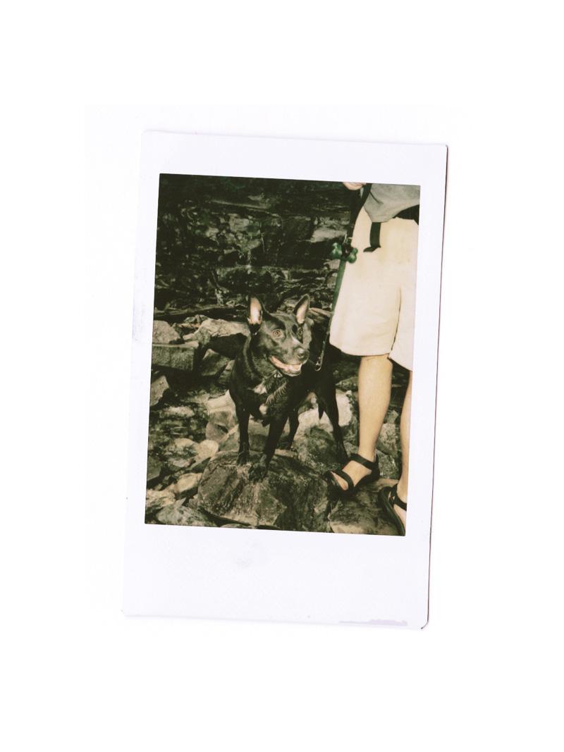 nellie at glen onoco falls | via: bekuh b.