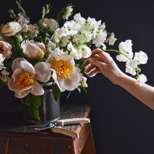 in bloom | via: bekuh b.