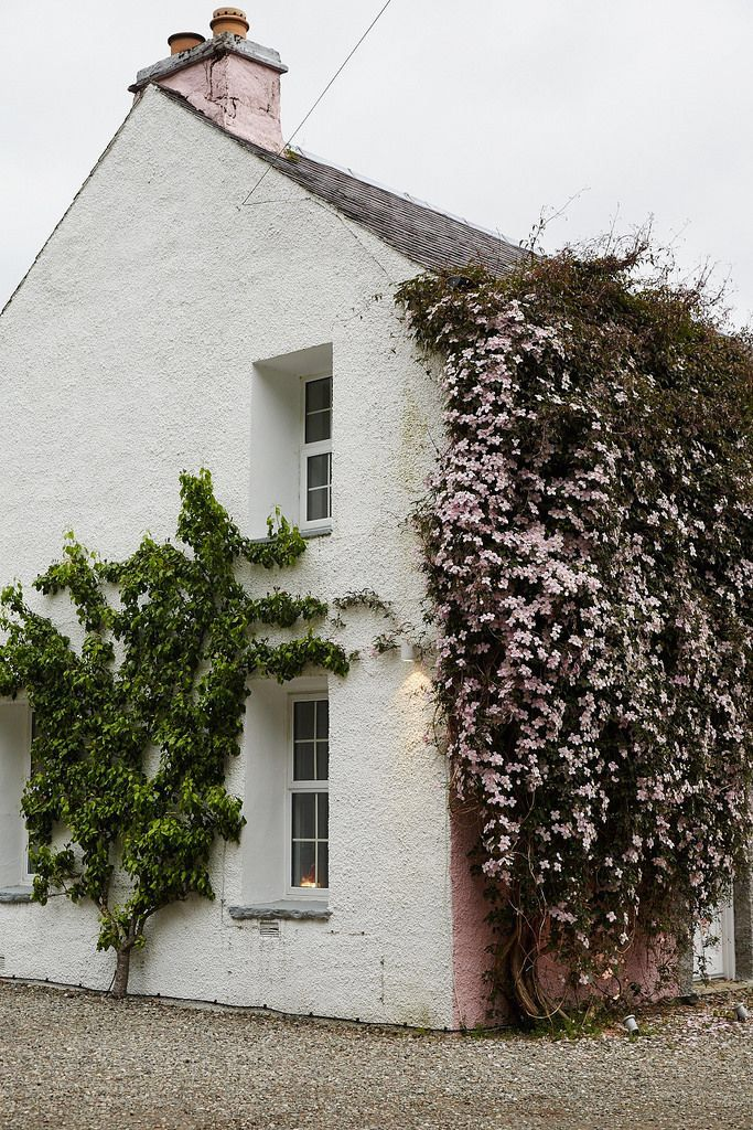 flower covered cottage | image via: bekuh b.