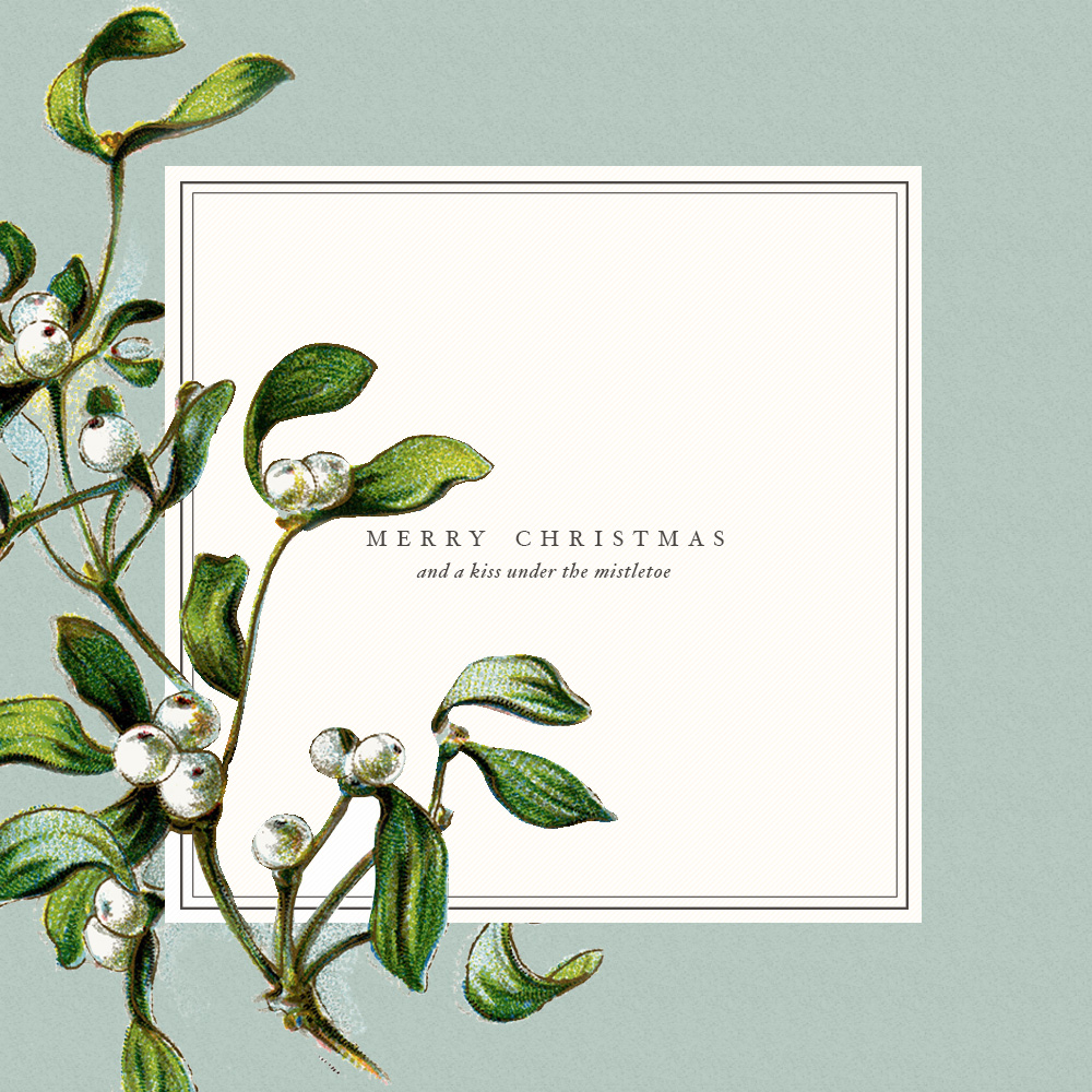 merry christmas | image vi: bekuh b.