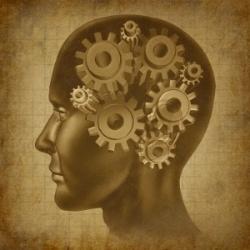 intelligence-brain-function-small.jpg