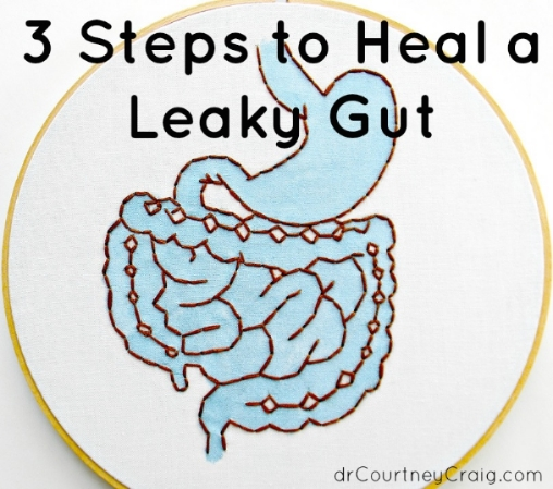 leaky gut CFS