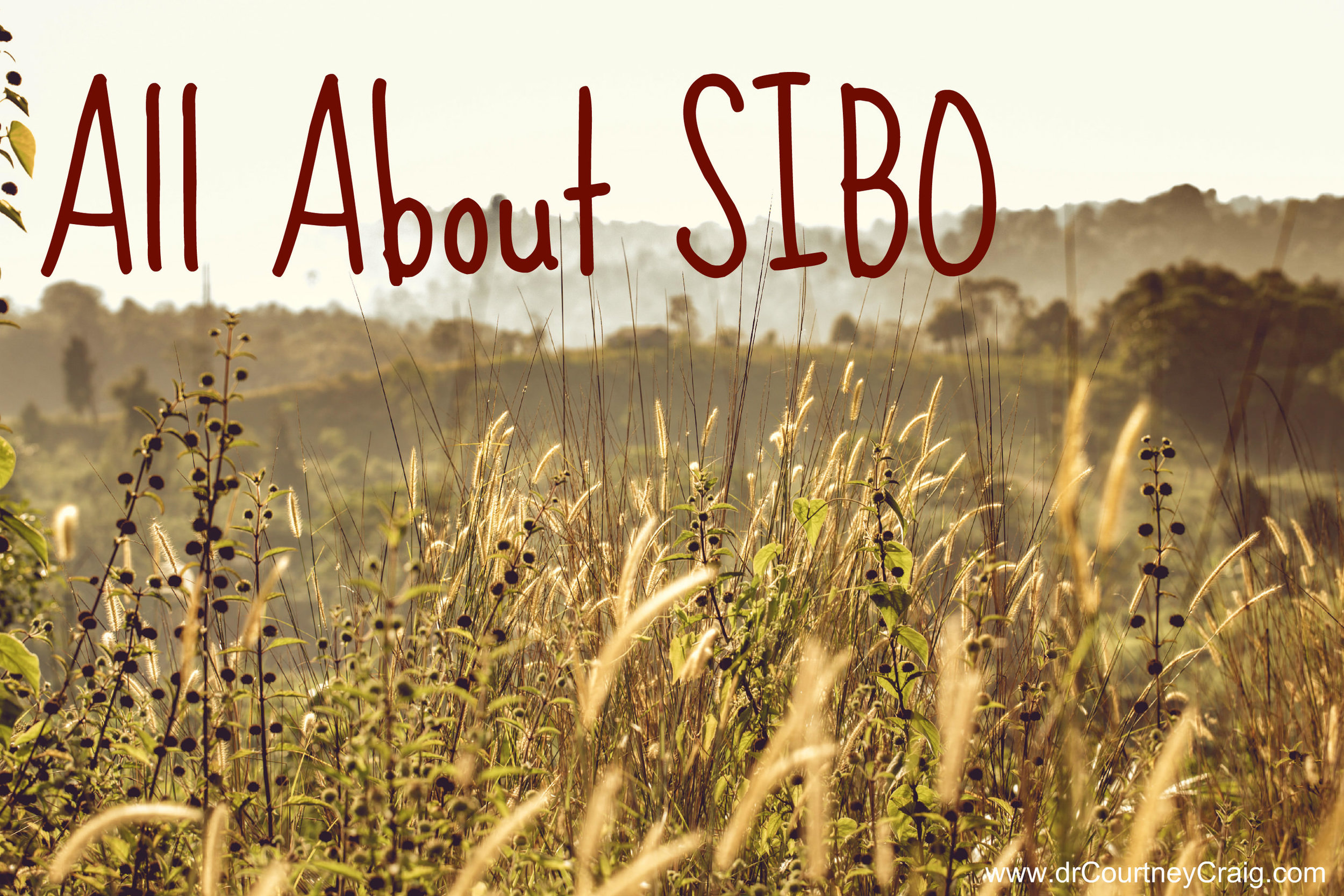 Is small intestinal bowel overgrowth SIBO common in chronic fatigue syndrome and fibromyalgia? How to test for small intestinal bowel overgrowth and how to treat it.