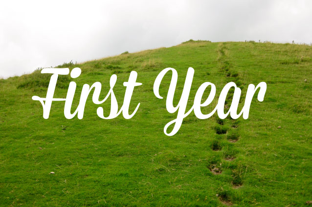 first-year.jpg