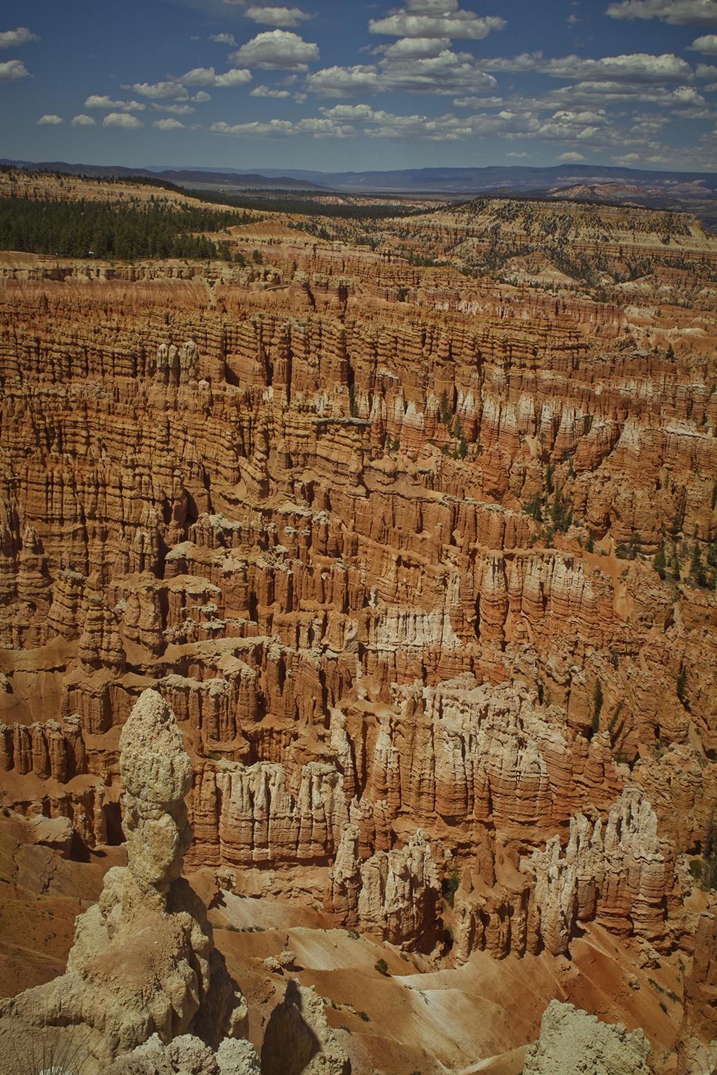 Rhodes Wedding Co Bryce Canyon 16