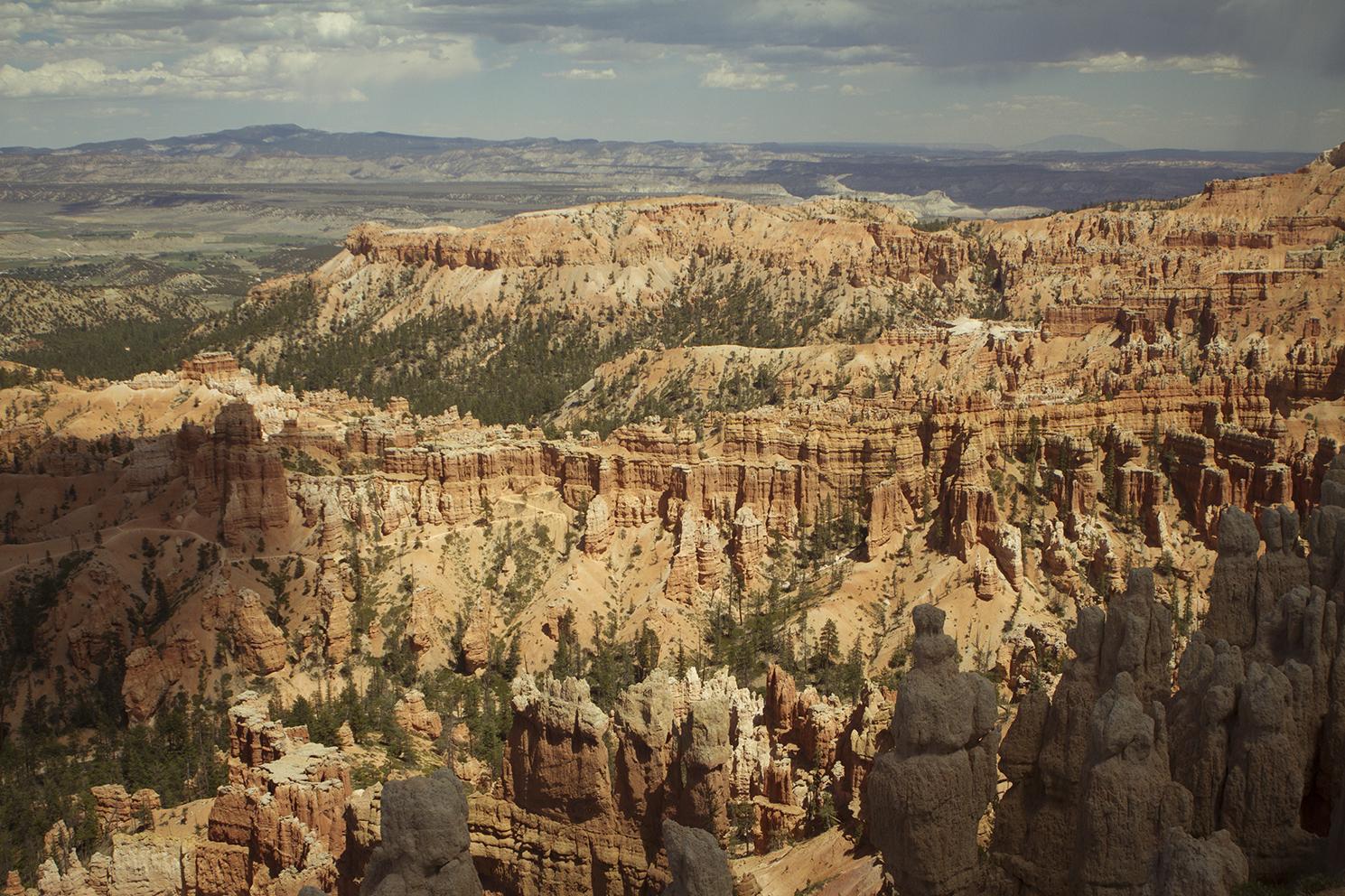Rhodes Wedding Co Bryce Canyon 19