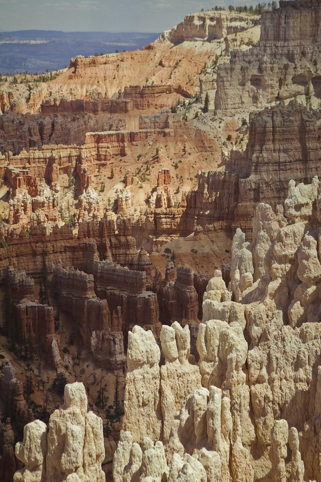 Rhodes Wedding Co Bryce Canyon 20