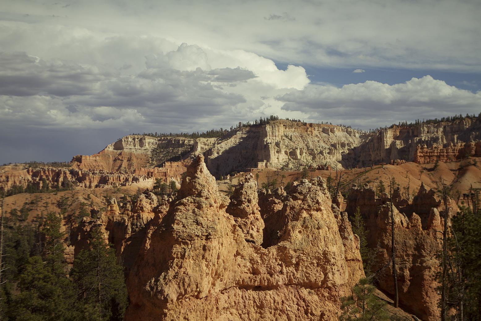 Rhodes Wedding Co Bryce Canyon 25