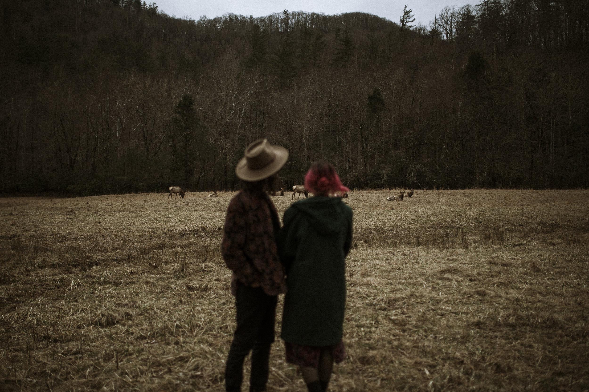 blue-ridge-mountains-couple-photographer-33.jpg