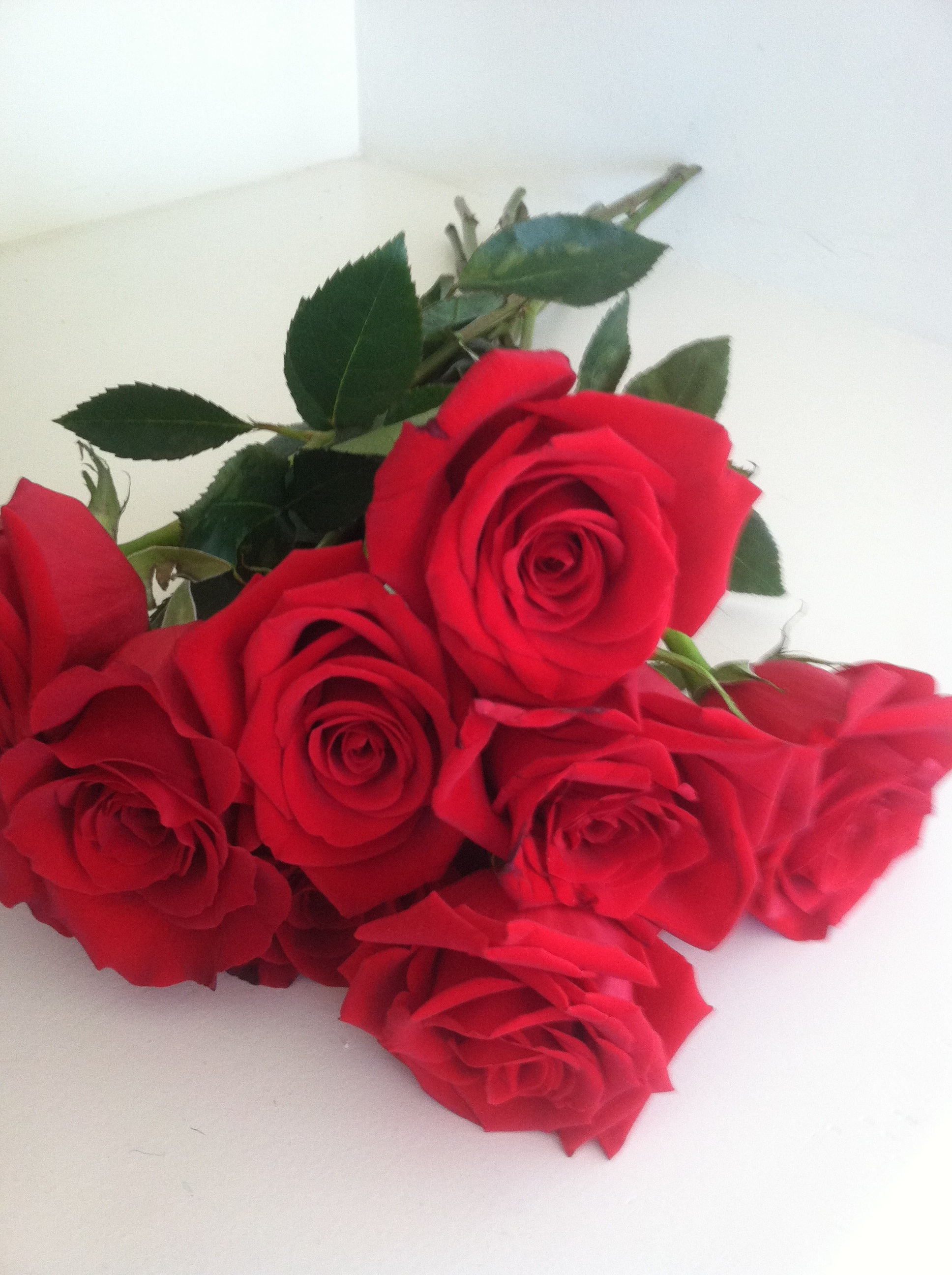 Valentines Day Roses Patient Care.jpg