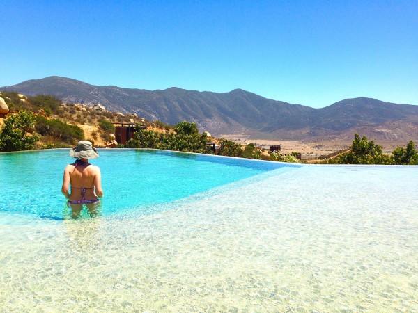 pool encuentro endemico