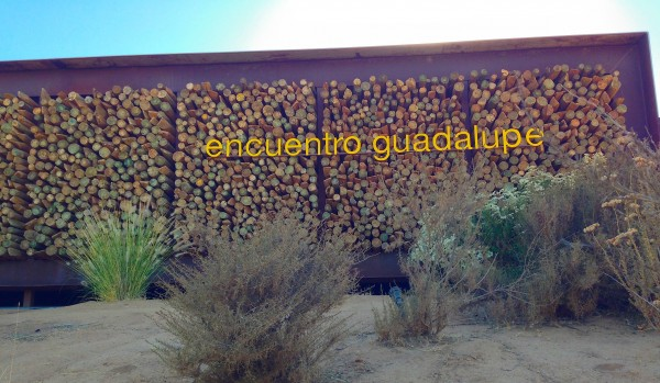 encuentro guadalupe welcome