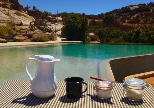 coffee poolside endemico