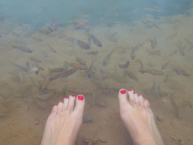 sahara oasis feet