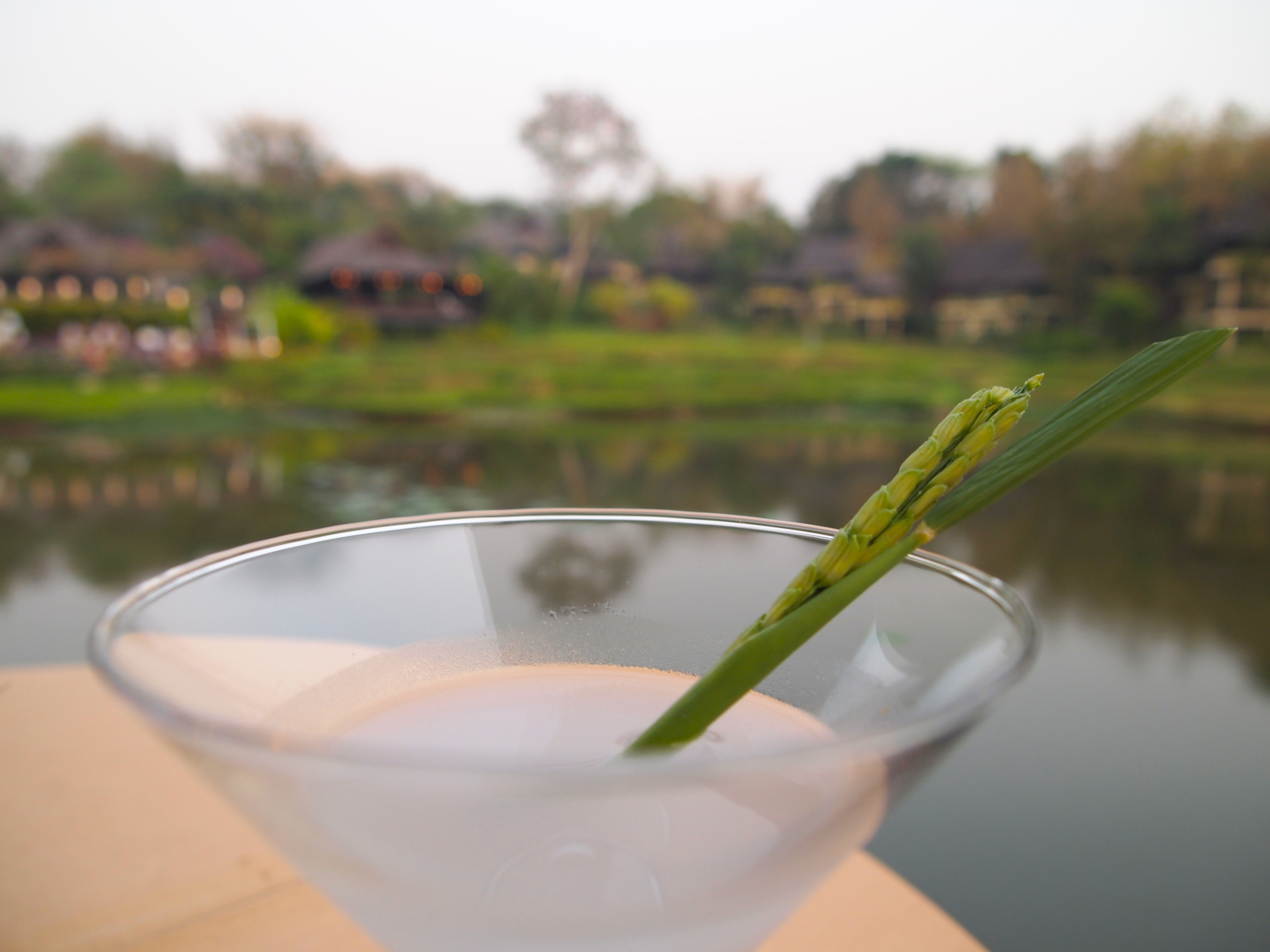 Ask for it: Rice Field cocktail